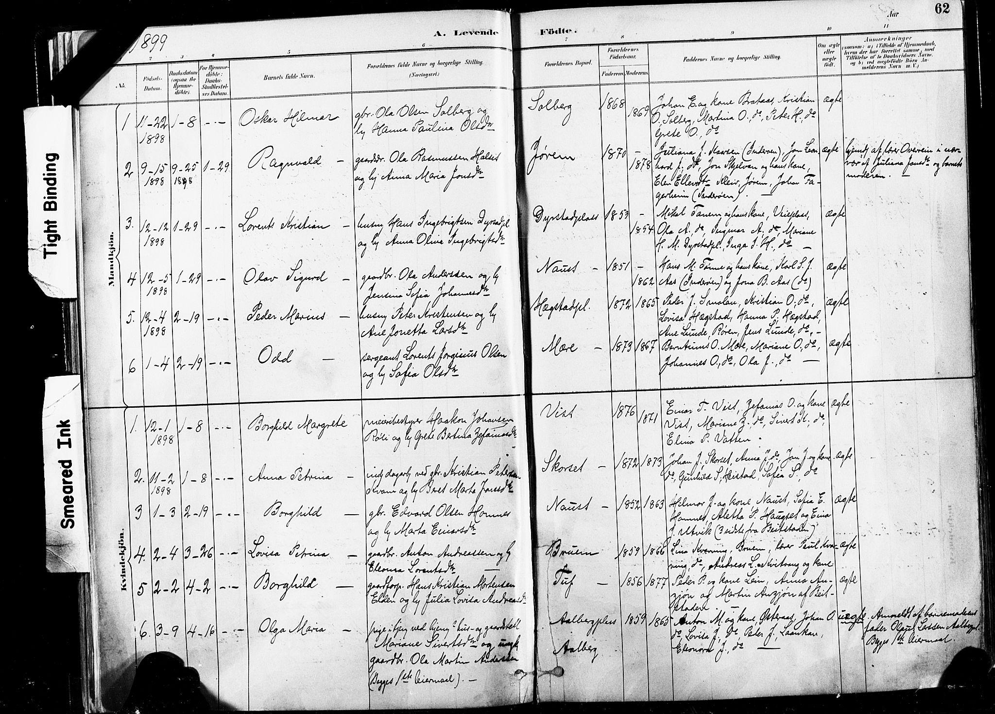SAT, Ministerialprotokoller, klokkerbøker og fødselsregistre - Nord-Trøndelag, 735/L0351: Ministerialbok nr. 735A10, 1884-1908, s. 62