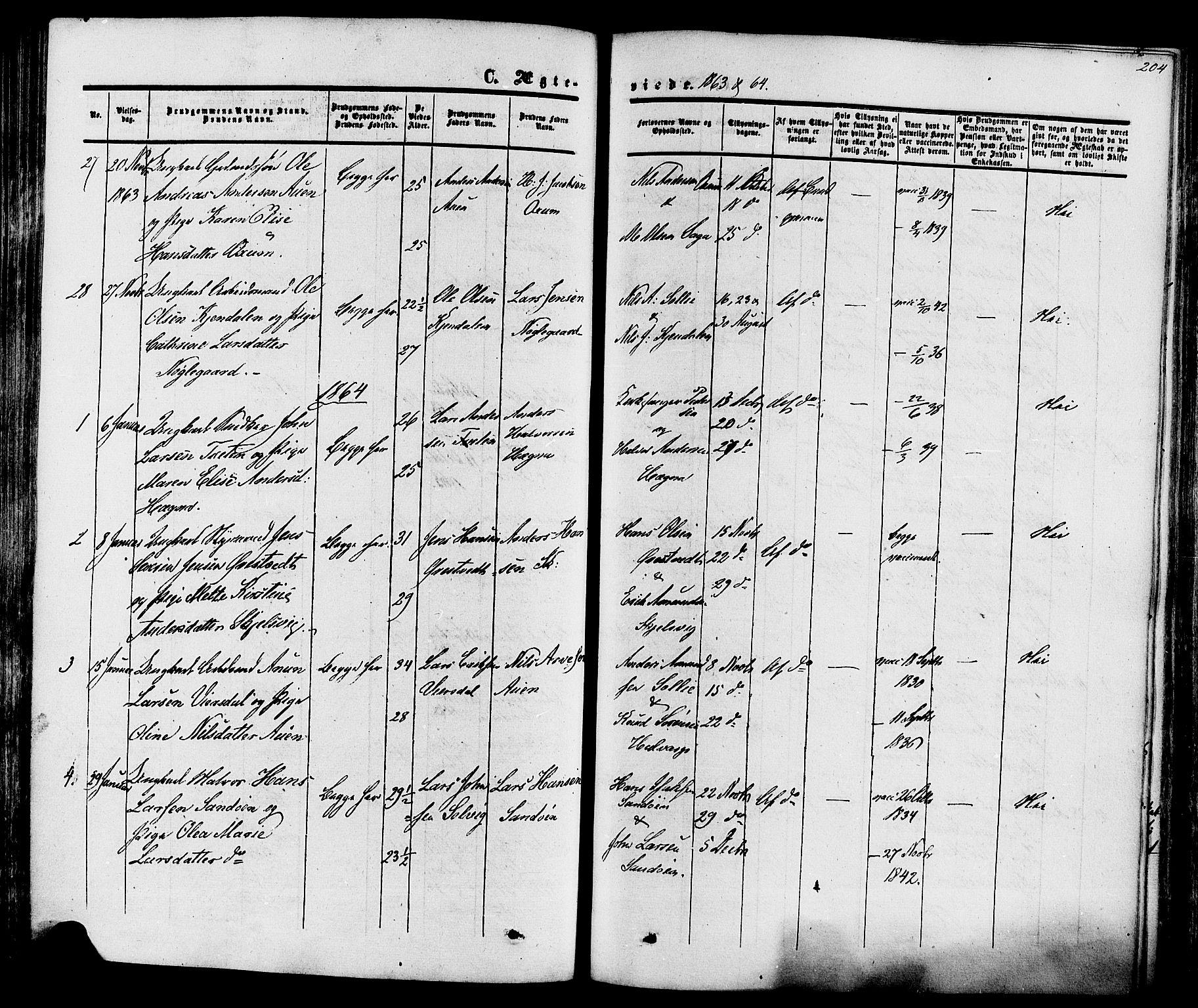 SAKO, Eidanger kirkebøker, F/Fa/L0010: Ministerialbok nr. 10, 1859-1874, s. 204