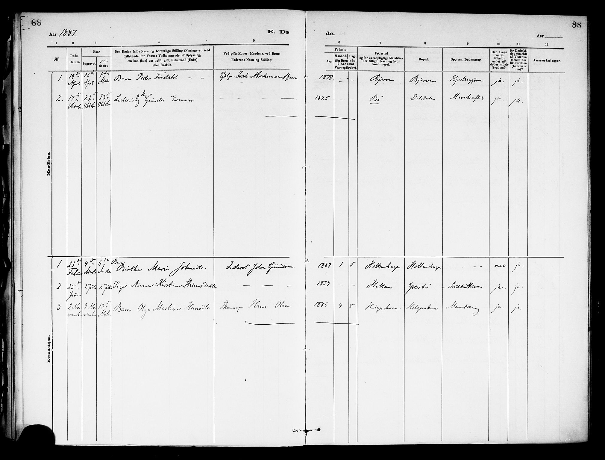 SAKO, Holla kirkebøker, F/Fa/L0009: Ministerialbok nr. 9, 1881-1897, s. 88