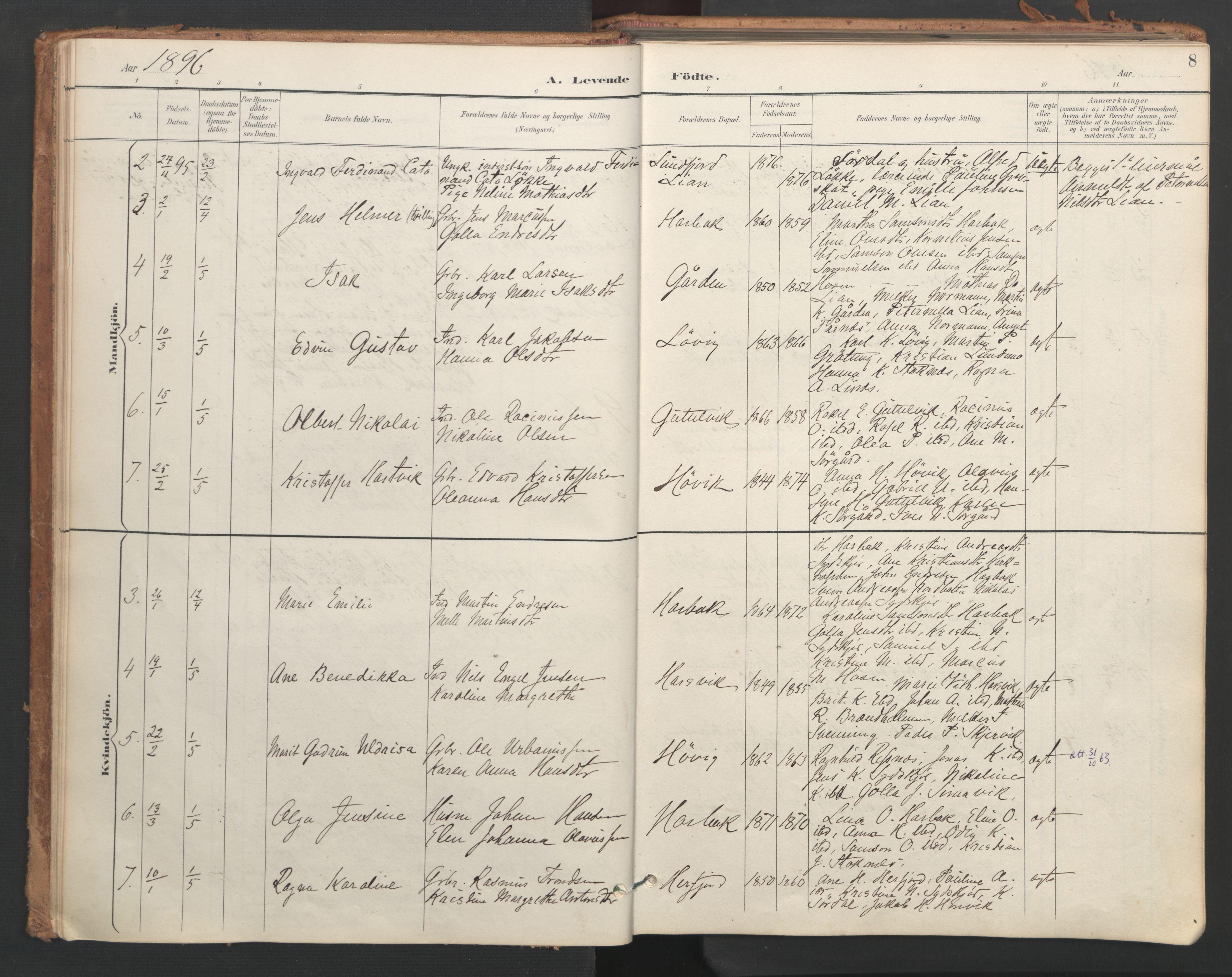 SAT, Ministerialprotokoller, klokkerbøker og fødselsregistre - Sør-Trøndelag, 656/L0693: Ministerialbok nr. 656A02, 1894-1913, s. 8