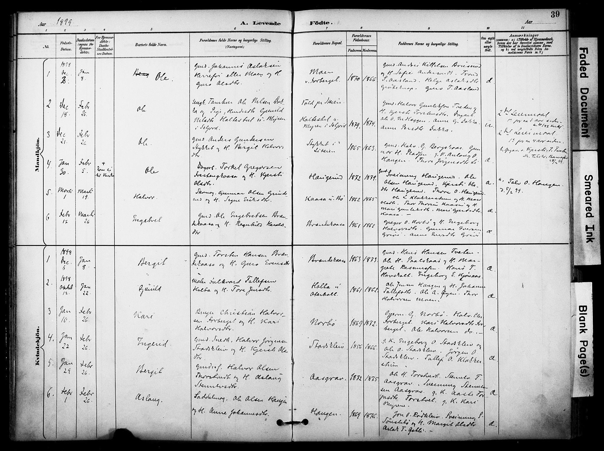 SAKO, Bø kirkebøker, F/Fa/L0011: Ministerialbok nr. 11, 1892-1900, s. 39