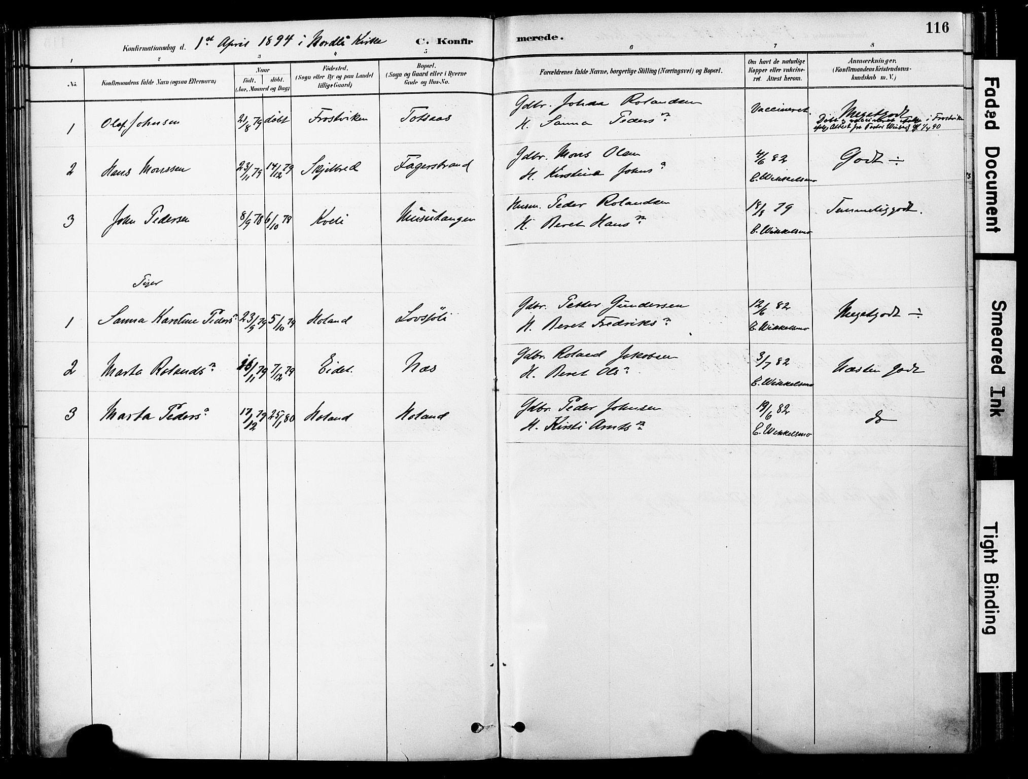 SAT, Ministerialprotokoller, klokkerbøker og fødselsregistre - Nord-Trøndelag, 755/L0494: Ministerialbok nr. 755A03, 1882-1902, s. 116