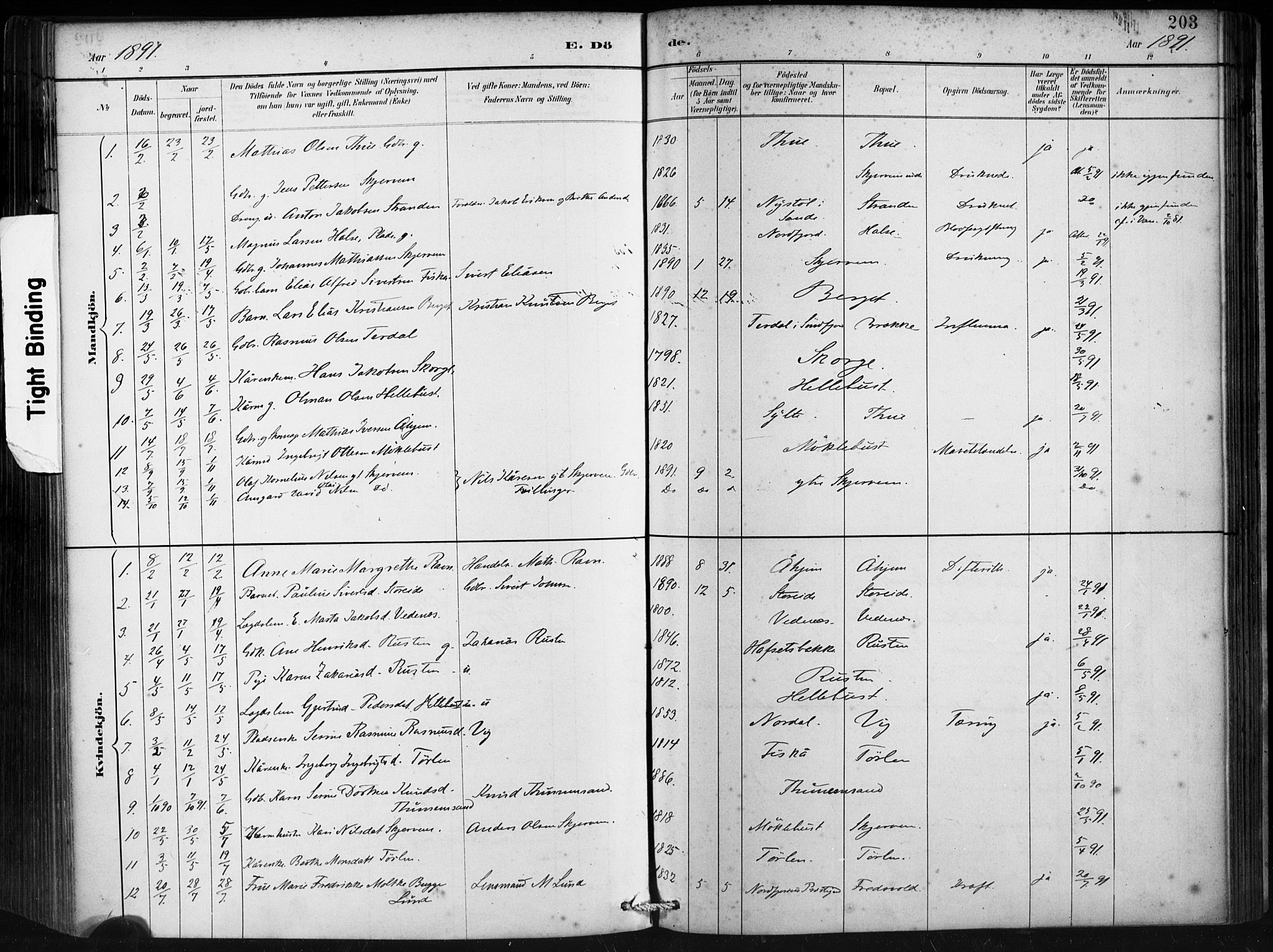SAT, Ministerialprotokoller, klokkerbøker og fødselsregistre - Møre og Romsdal, 501/L0008: Ministerialbok nr. 501A08, 1885-1901, s. 203