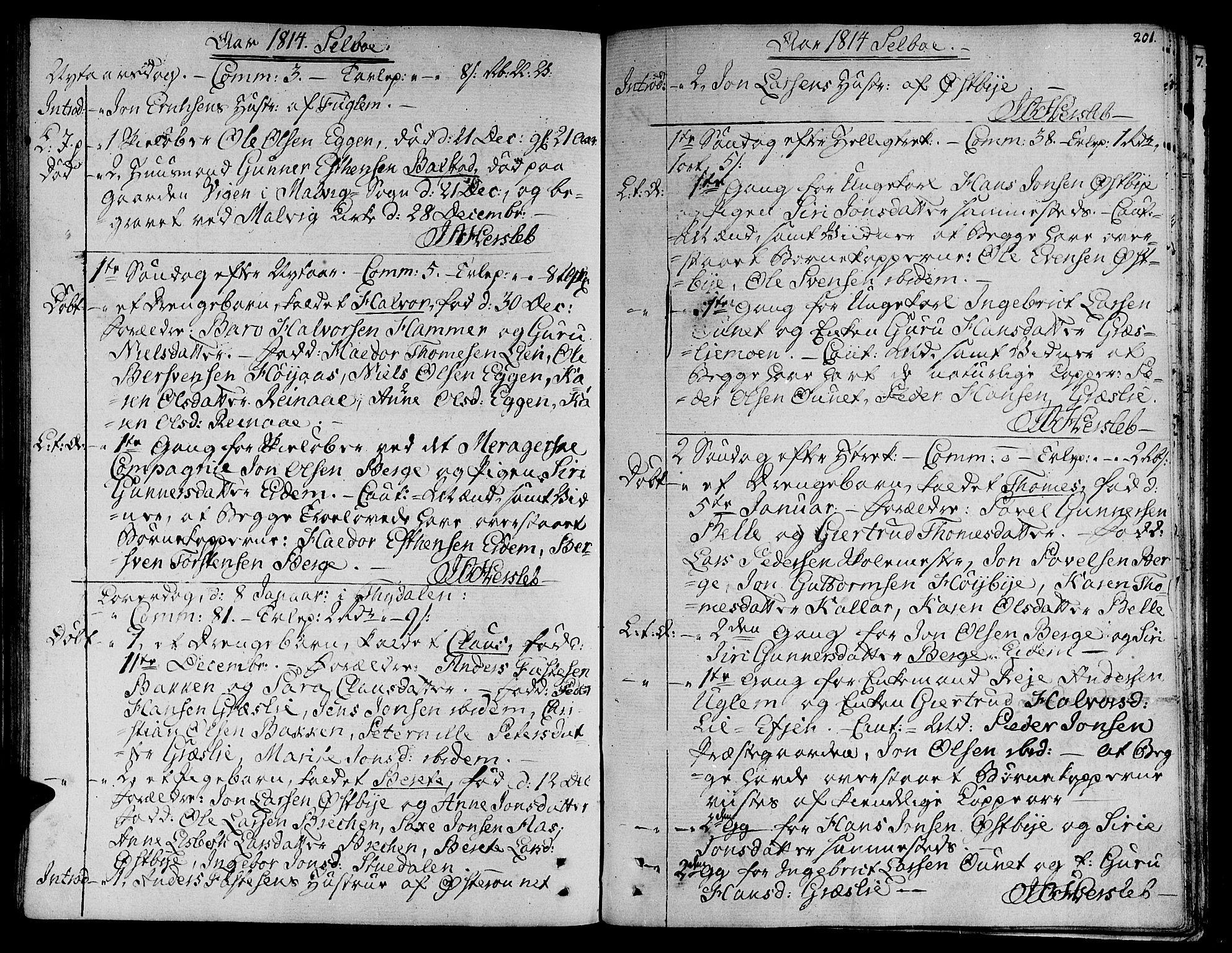 SAT, Ministerialprotokoller, klokkerbøker og fødselsregistre - Sør-Trøndelag, 695/L1140: Ministerialbok nr. 695A03, 1801-1815, s. 201