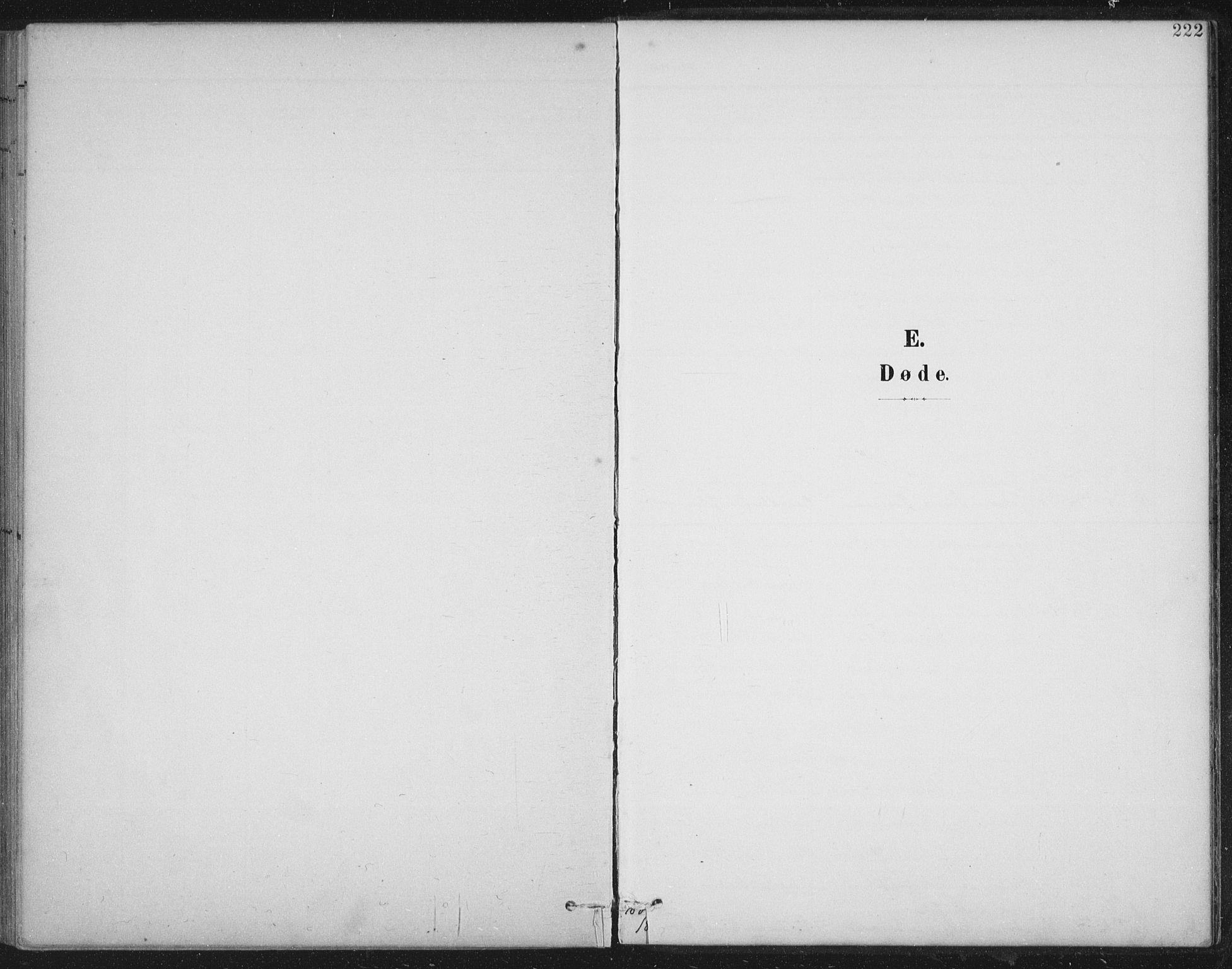 SAT, Ministerialprotokoller, klokkerbøker og fødselsregistre - Nord-Trøndelag, 724/L0269: Klokkerbok nr. 724C05, 1899-1920, s. 222