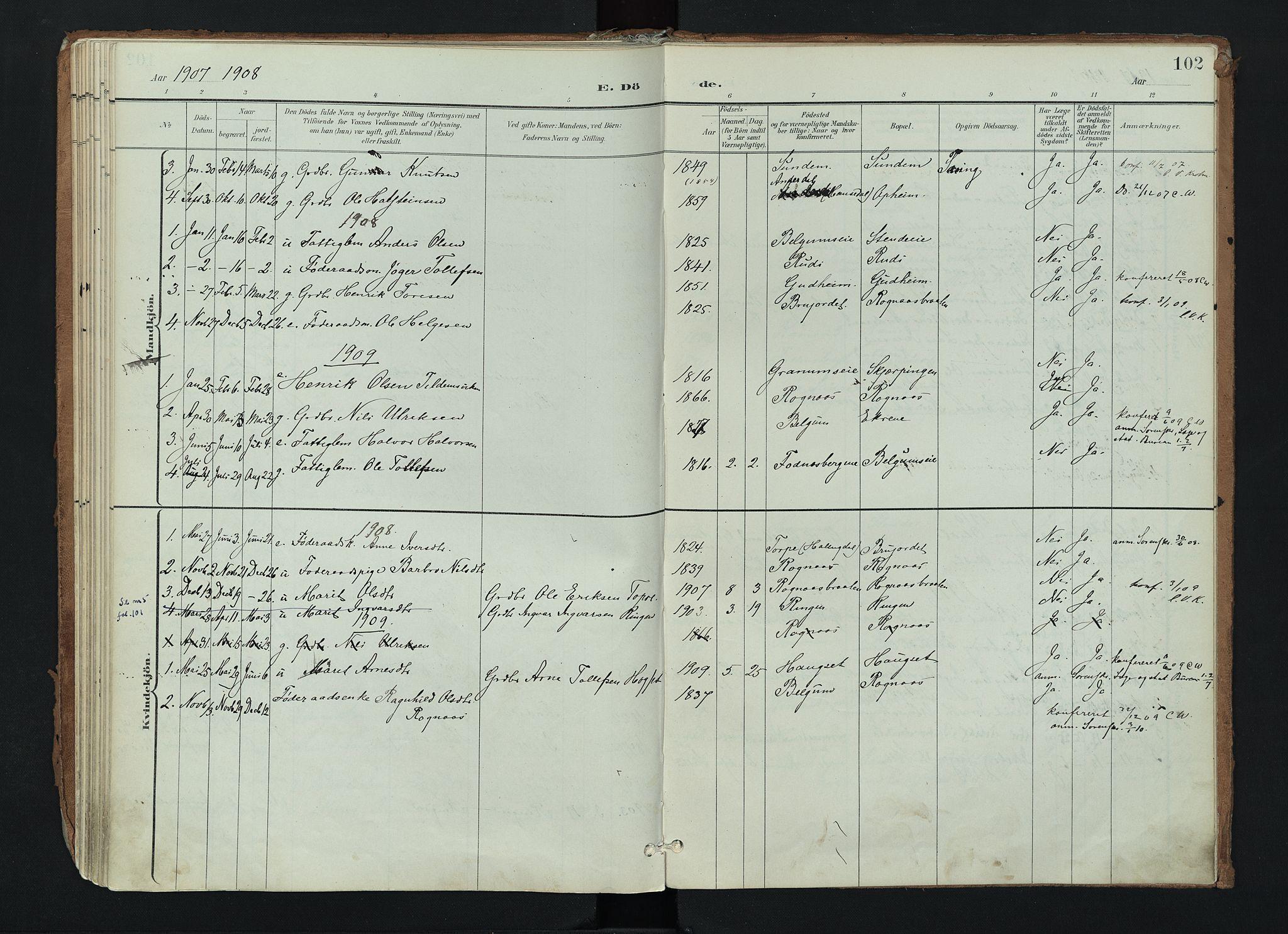 SAH, Nord-Aurdal prestekontor, Ministerialbok nr. 17, 1897-1926, s. 102