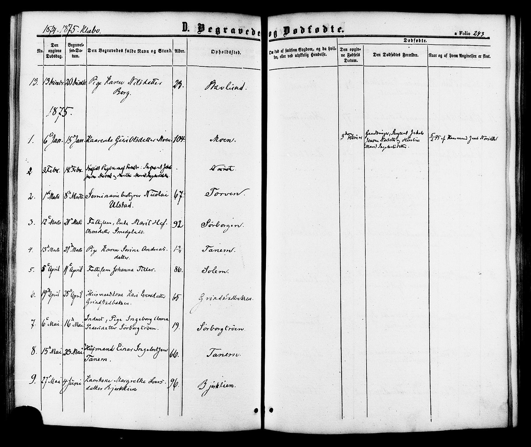 SAT, Ministerialprotokoller, klokkerbøker og fødselsregistre - Sør-Trøndelag, 618/L0442: Ministerialbok nr. 618A06 /1, 1863-1879, s. 243