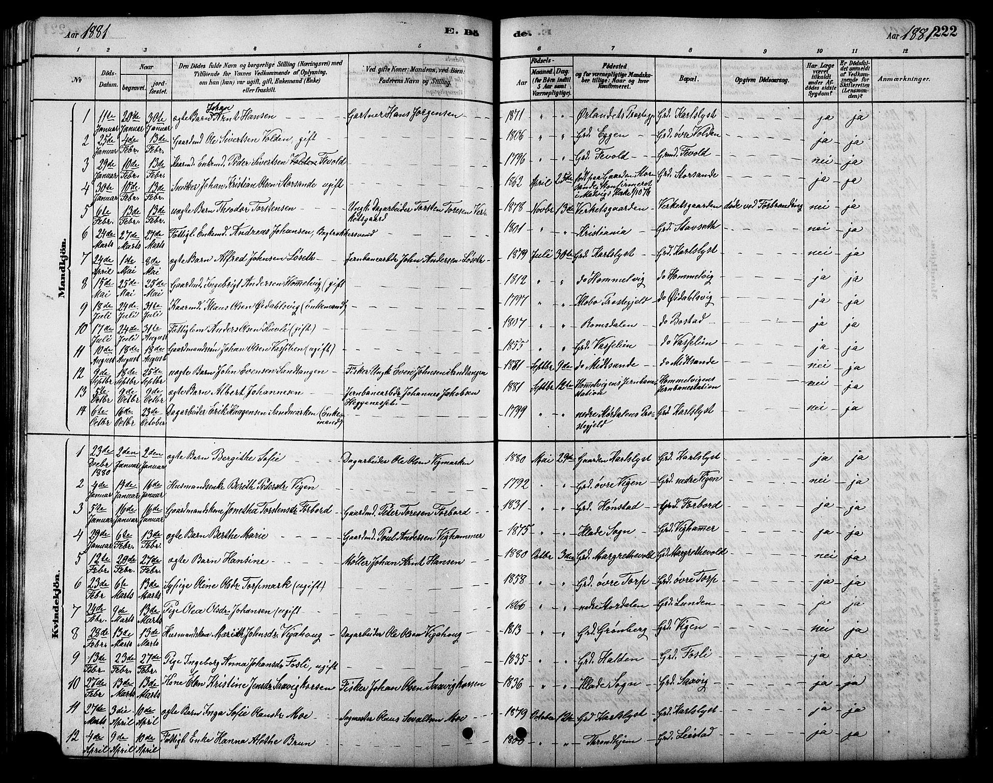 SAT, Ministerialprotokoller, klokkerbøker og fødselsregistre - Sør-Trøndelag, 616/L0423: Klokkerbok nr. 616C06, 1878-1903, s. 222