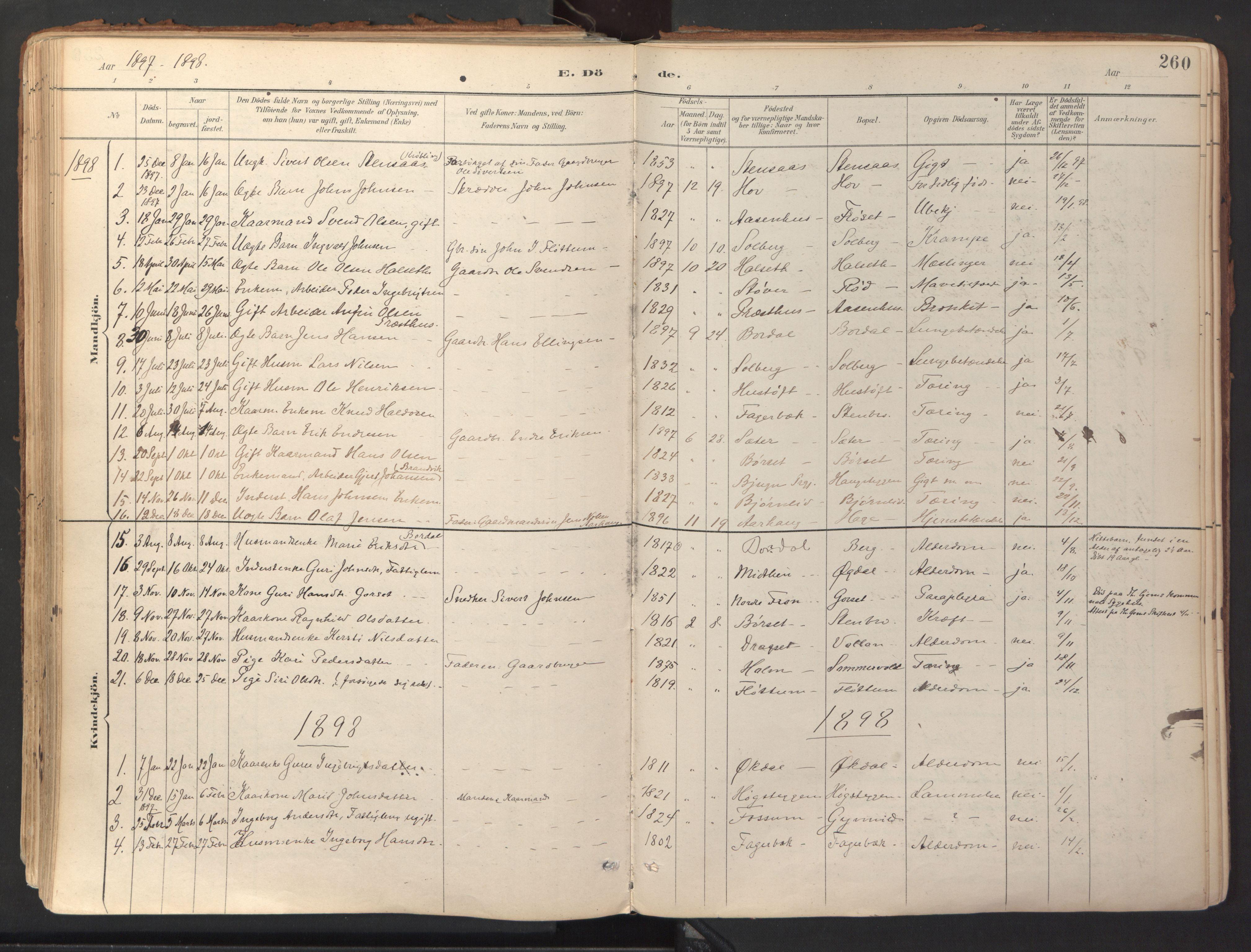 SAT, Ministerialprotokoller, klokkerbøker og fødselsregistre - Sør-Trøndelag, 689/L1041: Ministerialbok nr. 689A06, 1891-1923, s. 260