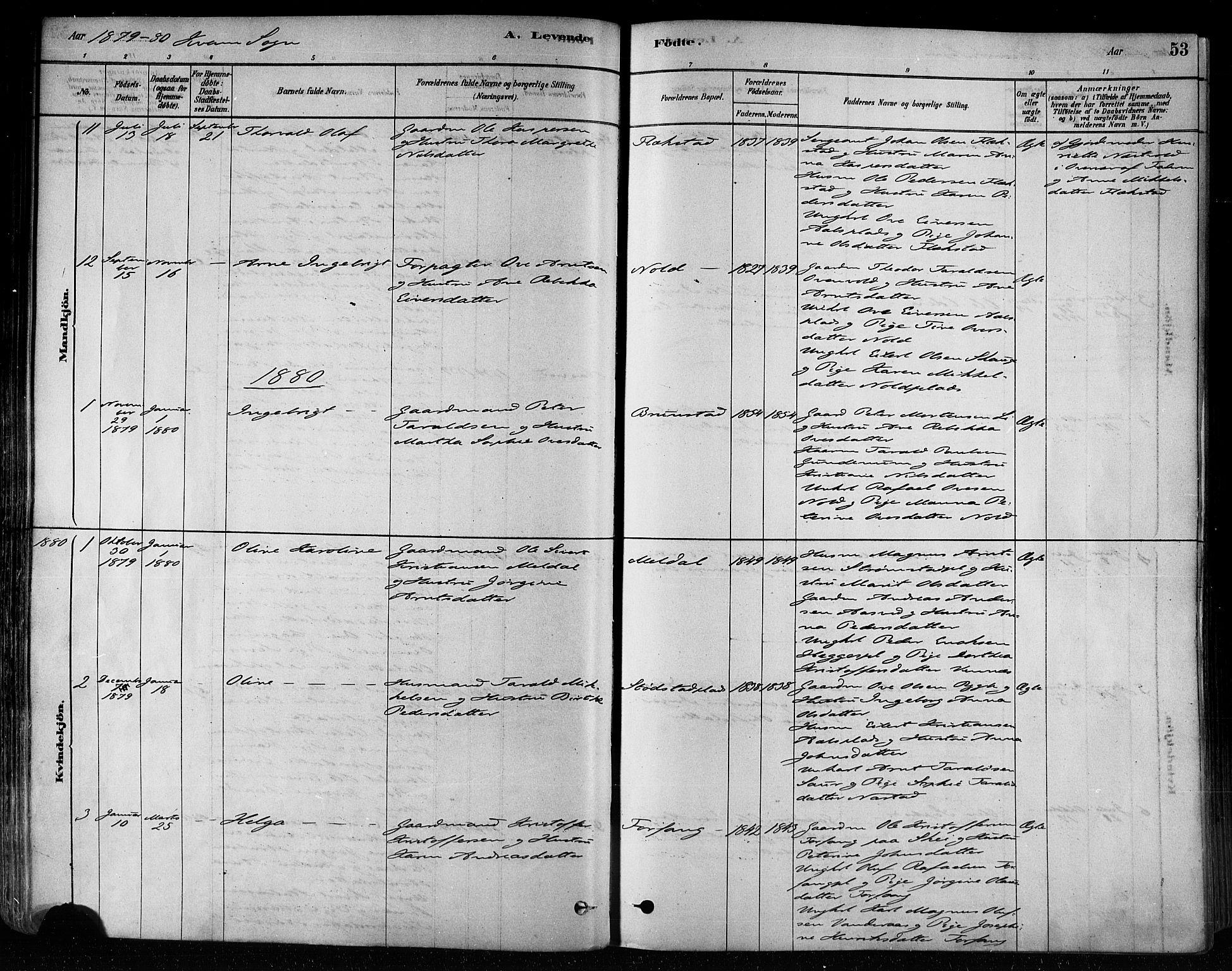 SAT, Ministerialprotokoller, klokkerbøker og fødselsregistre - Nord-Trøndelag, 746/L0449: Ministerialbok nr. 746A07 /2, 1878-1899, s. 53