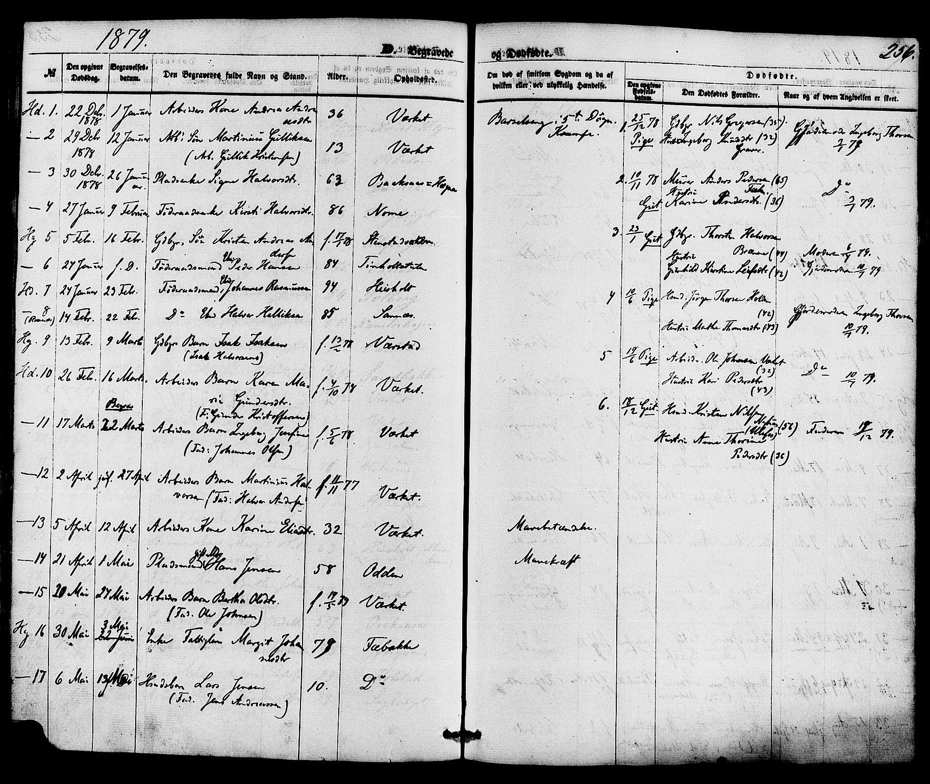SAKO, Holla kirkebøker, F/Fa/L0007: Ministerialbok nr. 7, 1869-1881, s. 256