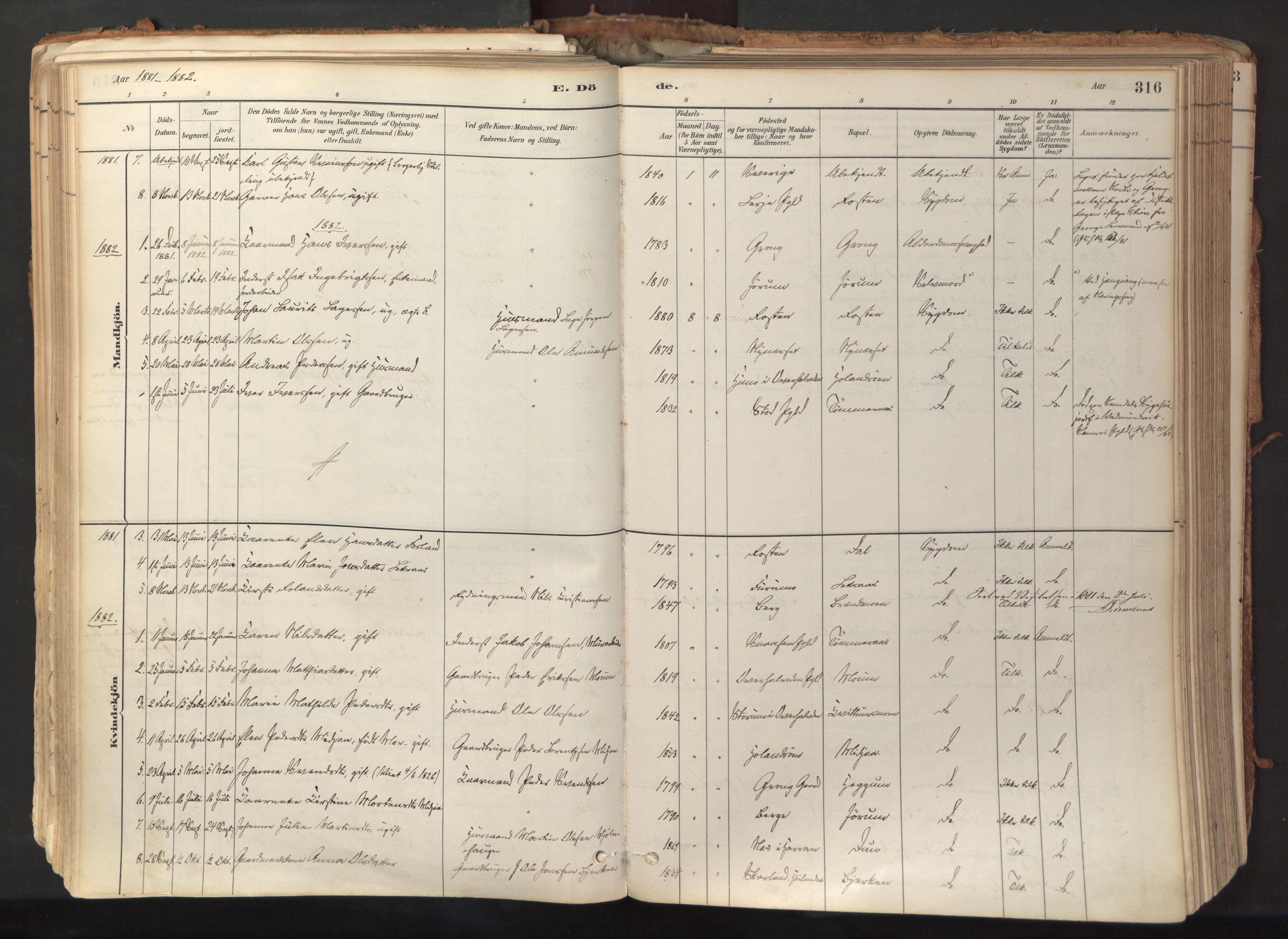 SAT, Ministerialprotokoller, klokkerbøker og fødselsregistre - Nord-Trøndelag, 758/L0519: Ministerialbok nr. 758A04, 1880-1926, s. 316