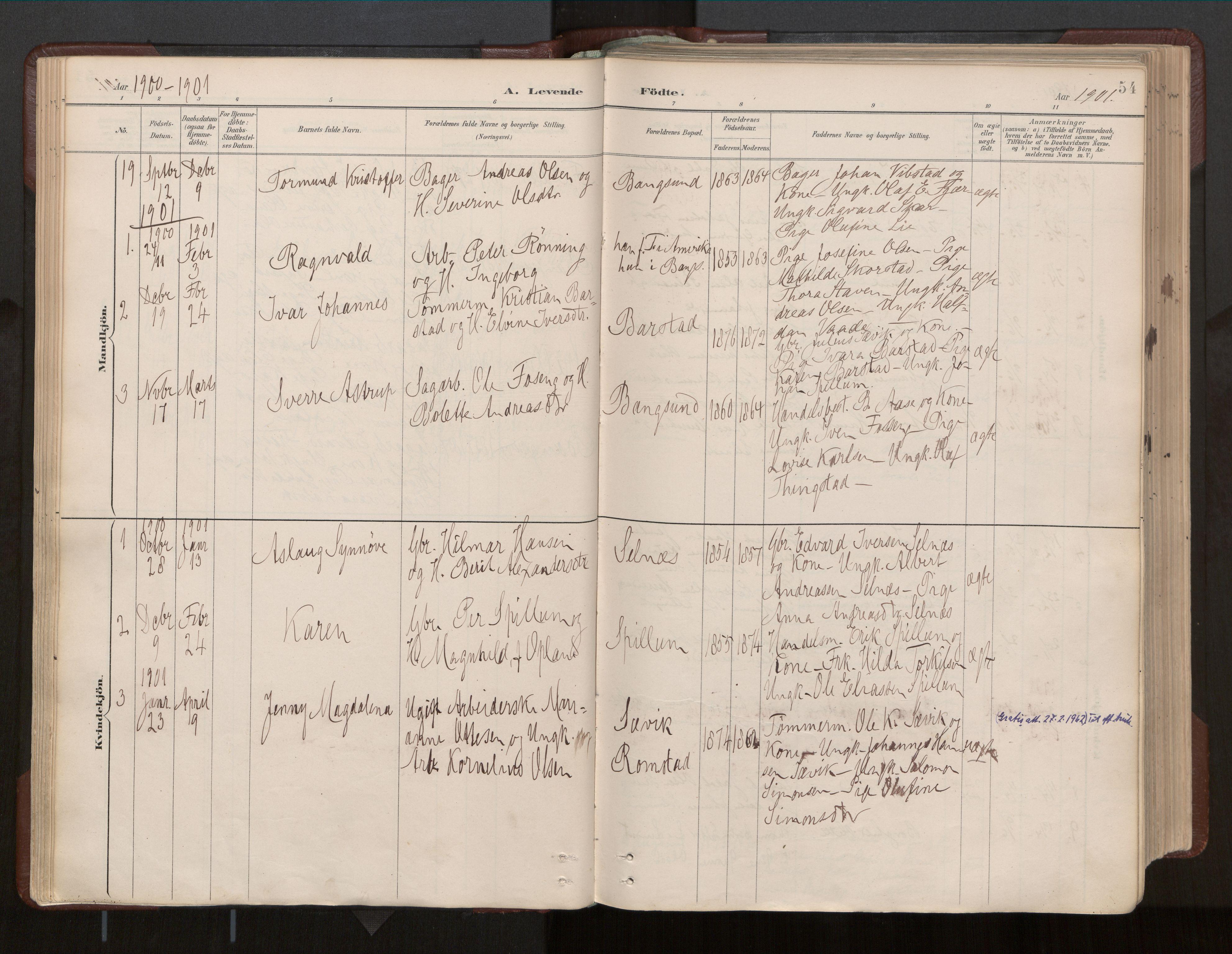 SAT, Ministerialprotokoller, klokkerbøker og fødselsregistre - Nord-Trøndelag, 770/L0589: Ministerialbok nr. 770A03, 1887-1929, s. 54