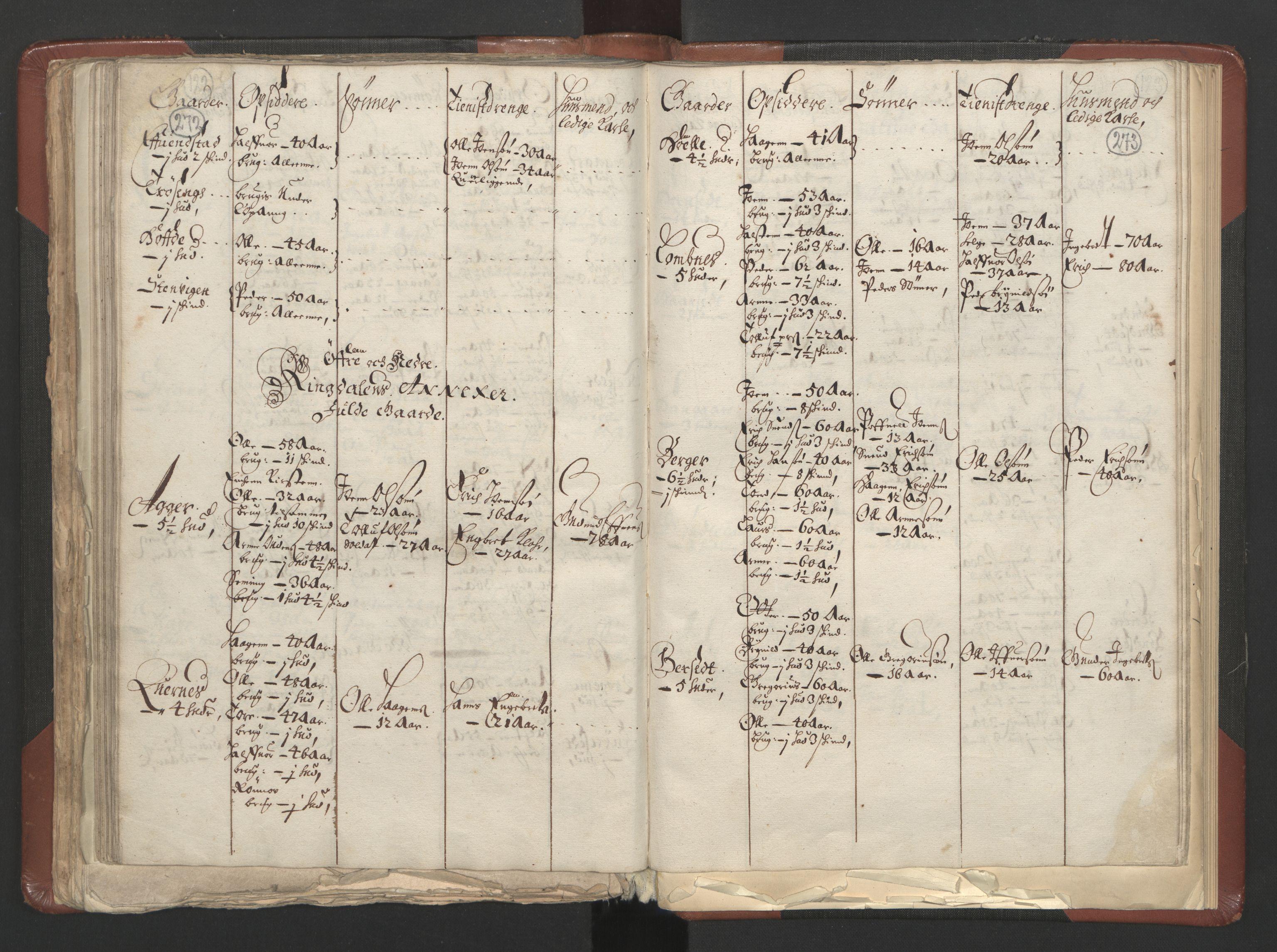 RA, Fogdenes og sorenskrivernes manntall 1664-1666, nr. 3: Hedmark fogderi og Solør, Østerdal og Odal fogderi, 1664, s. 272-273