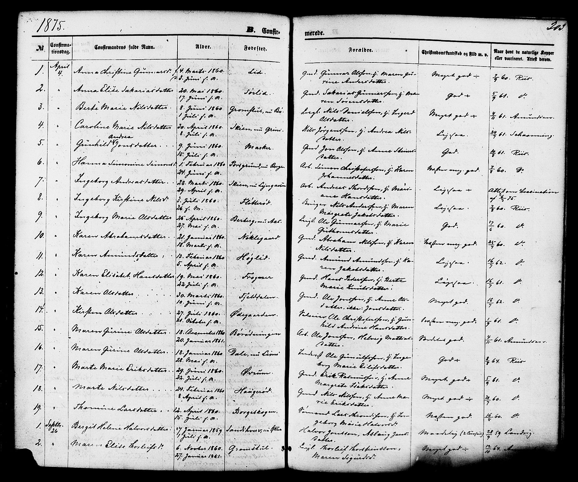 SAKO, Gjerpen kirkebøker, F/Fa/L0009: Ministerialbok nr. 9, 1872-1885, s. 203