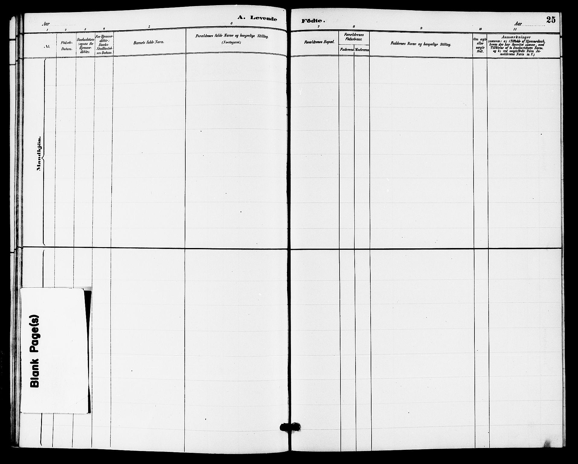 SAKO, Hjartdal kirkebøker, G/Gb/L0003: Klokkerbok nr. II 3, 1884-1899, s. 25