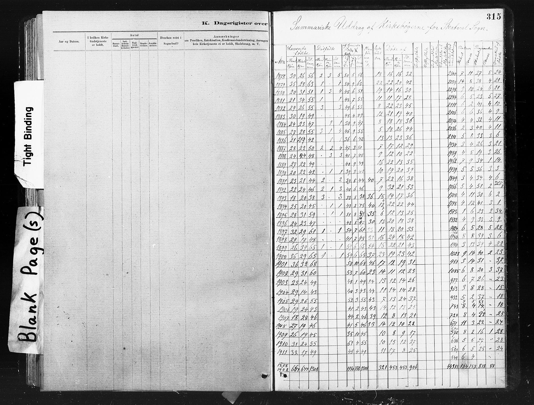 SAT, Ministerialprotokoller, klokkerbøker og fødselsregistre - Nord-Trøndelag, 712/L0103: Klokkerbok nr. 712C01, 1878-1917, s. 315