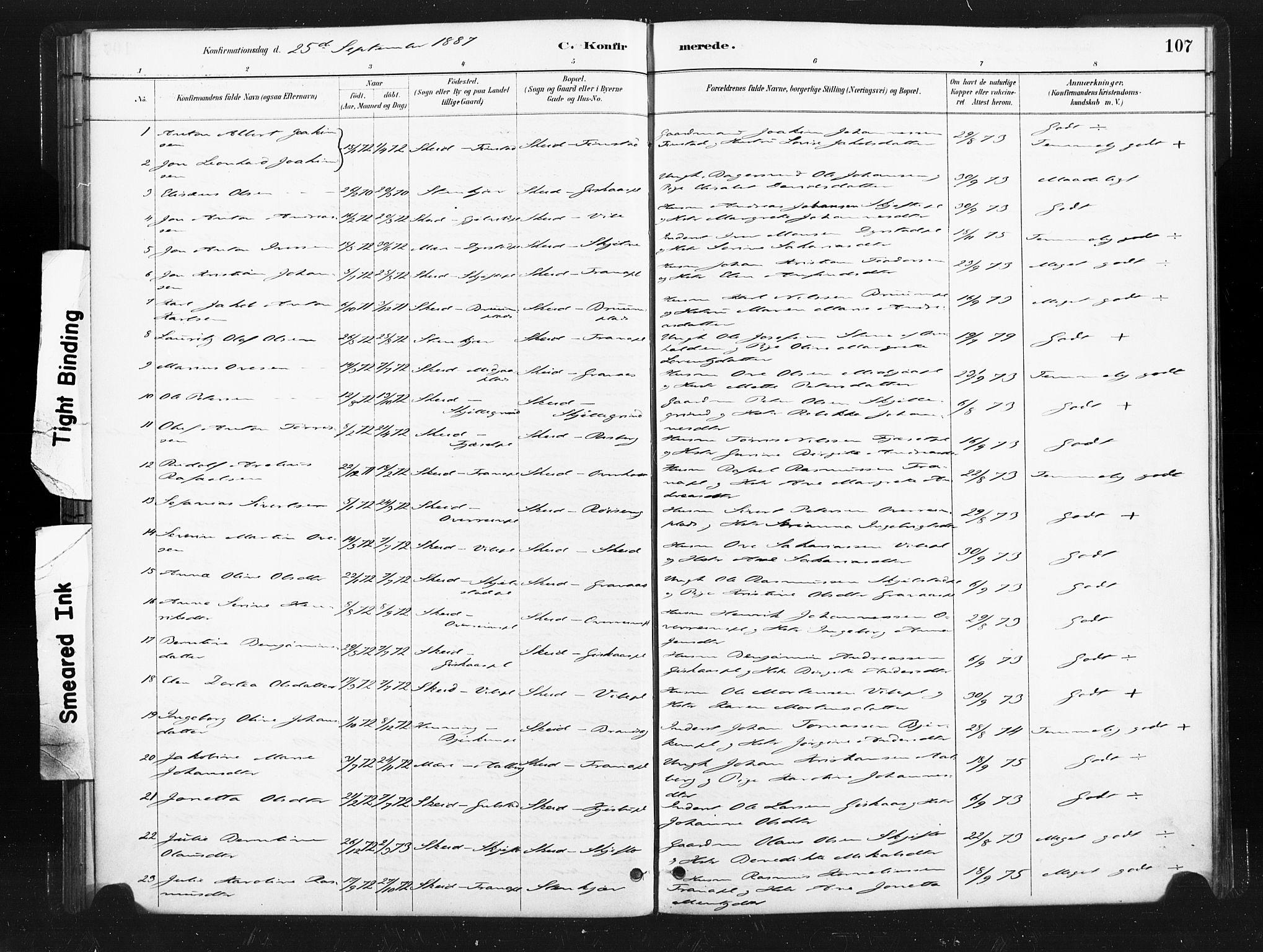 SAT, Ministerialprotokoller, klokkerbøker og fødselsregistre - Nord-Trøndelag, 736/L0361: Ministerialbok nr. 736A01, 1884-1906, s. 107