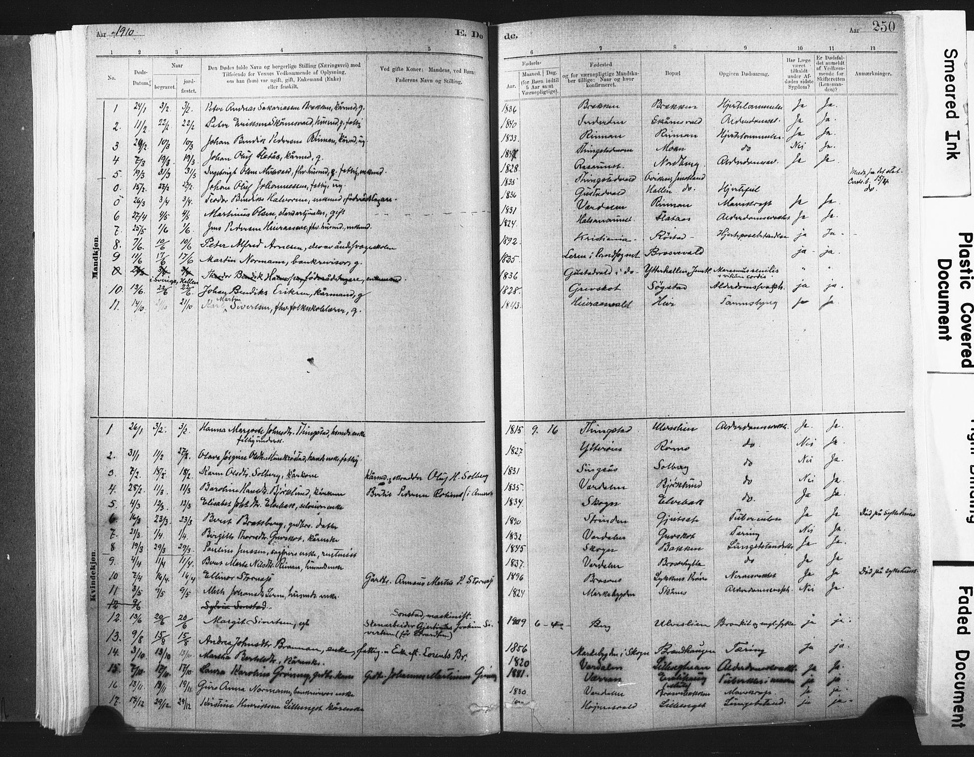 SAT, Ministerialprotokoller, klokkerbøker og fødselsregistre - Nord-Trøndelag, 721/L0207: Ministerialbok nr. 721A02, 1880-1911, s. 250