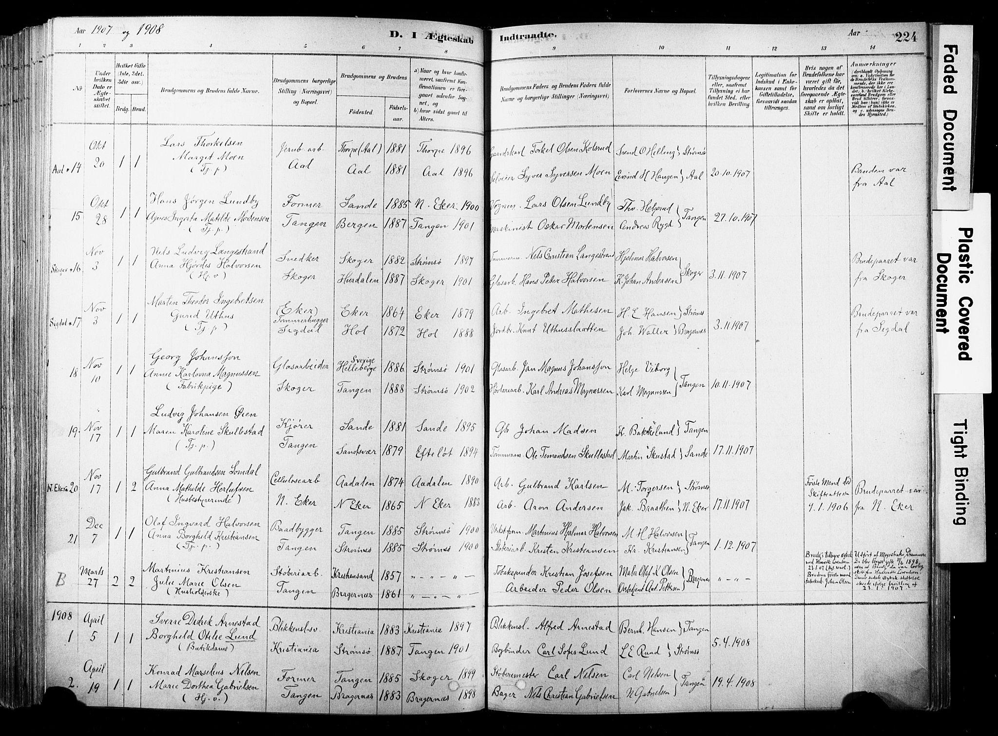 SAKO, Strømsø kirkebøker, F/Fb/L0006: Ministerialbok nr. II 6, 1879-1910, s. 224