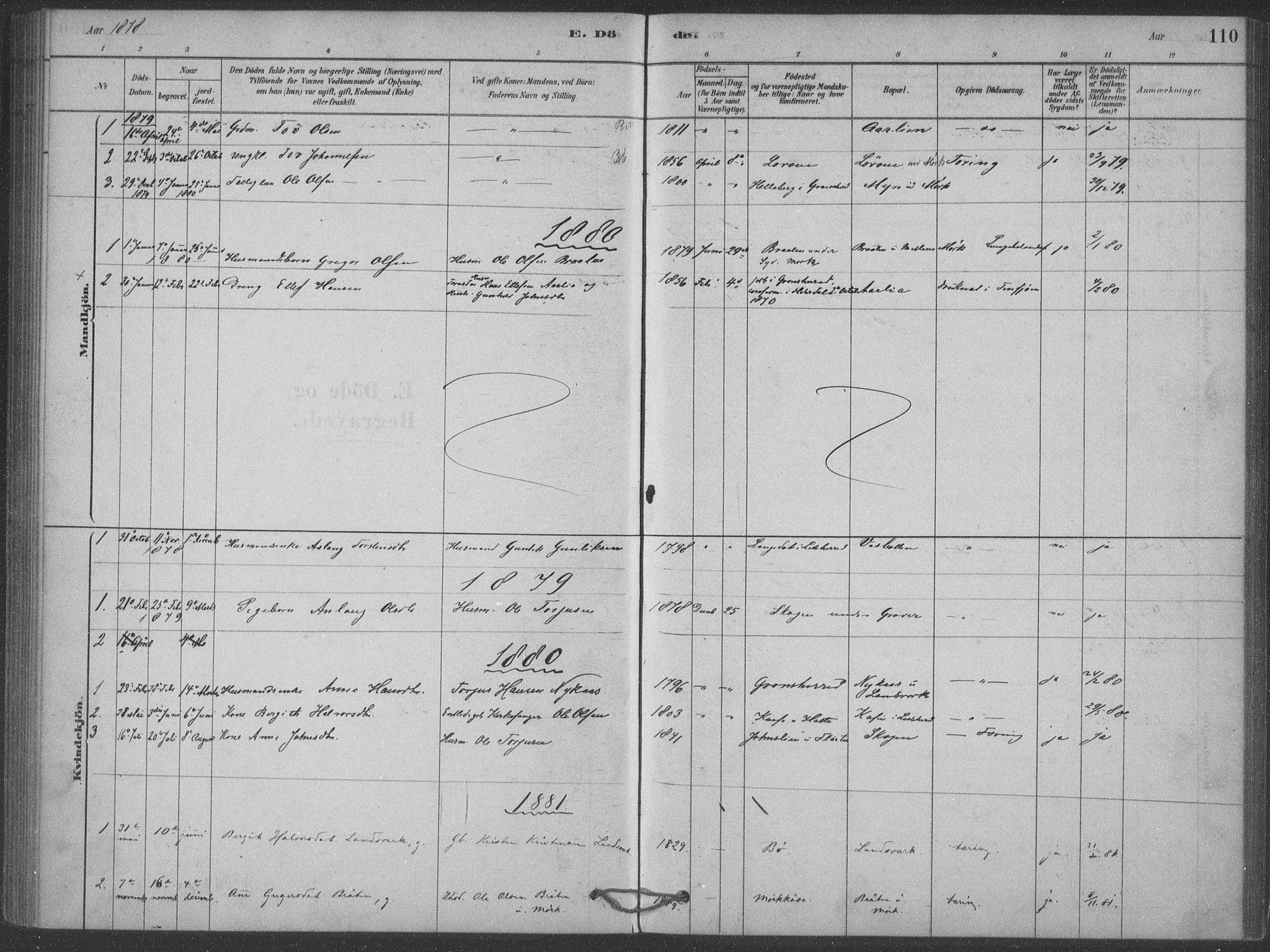 SAKO, Heddal kirkebøker, F/Fb/L0002: Ministerialbok nr. II 2, 1878-1913, s. 110