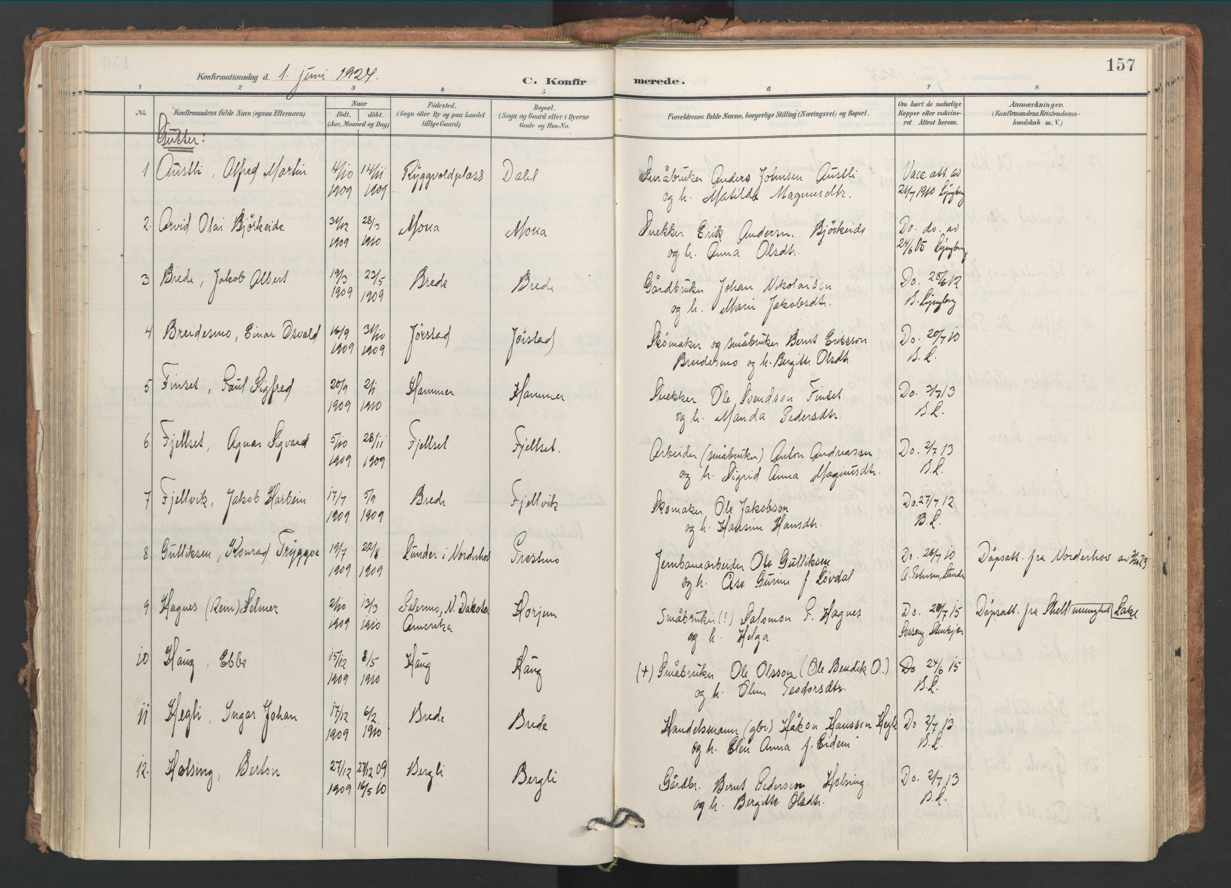 SAT, Ministerialprotokoller, klokkerbøker og fødselsregistre - Nord-Trøndelag, 749/L0477: Ministerialbok nr. 749A11, 1902-1927, s. 157