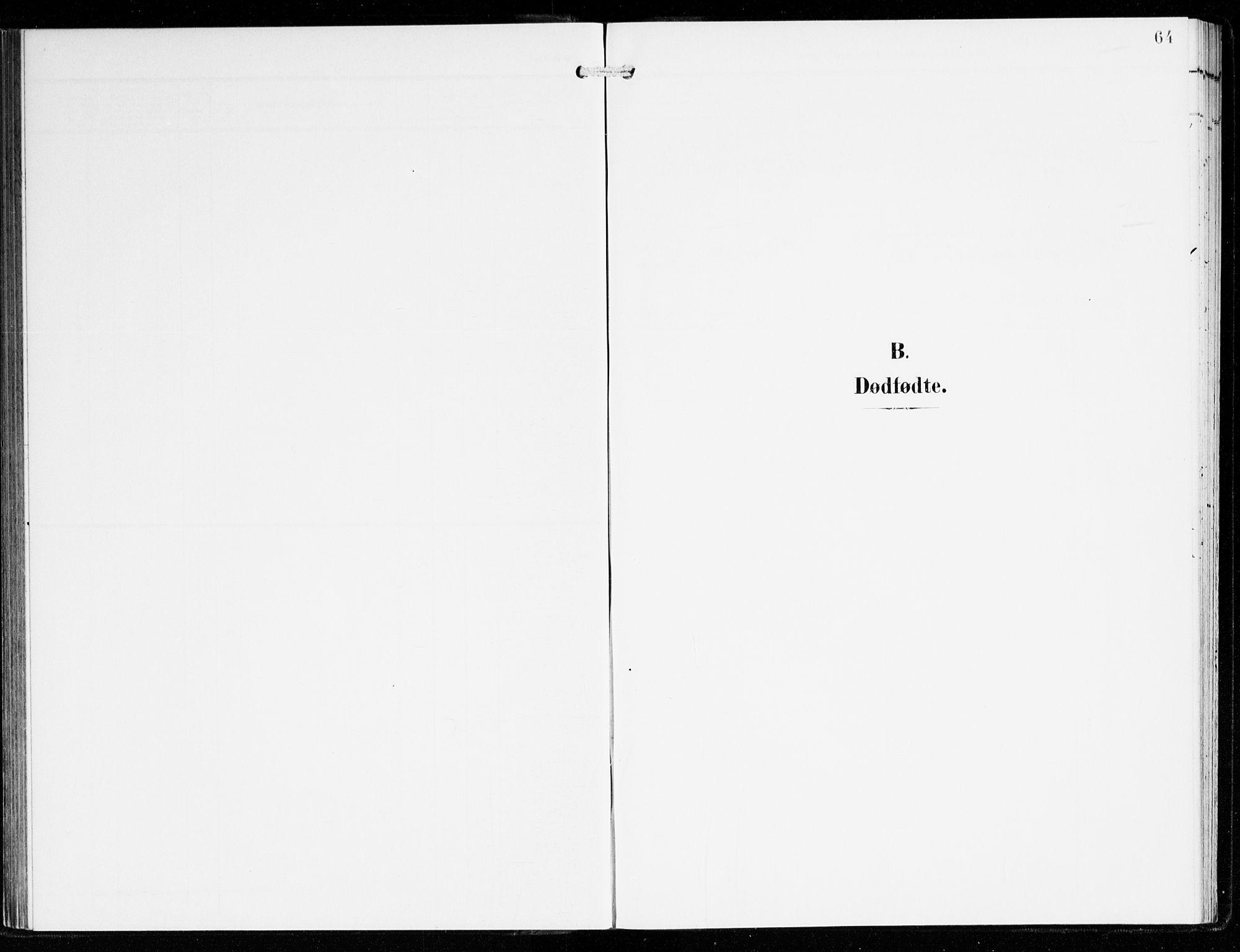 SAB, Hyllestad Sokneprestembete, Ministerialbok nr. B 2, 1903-1917, s. 64
