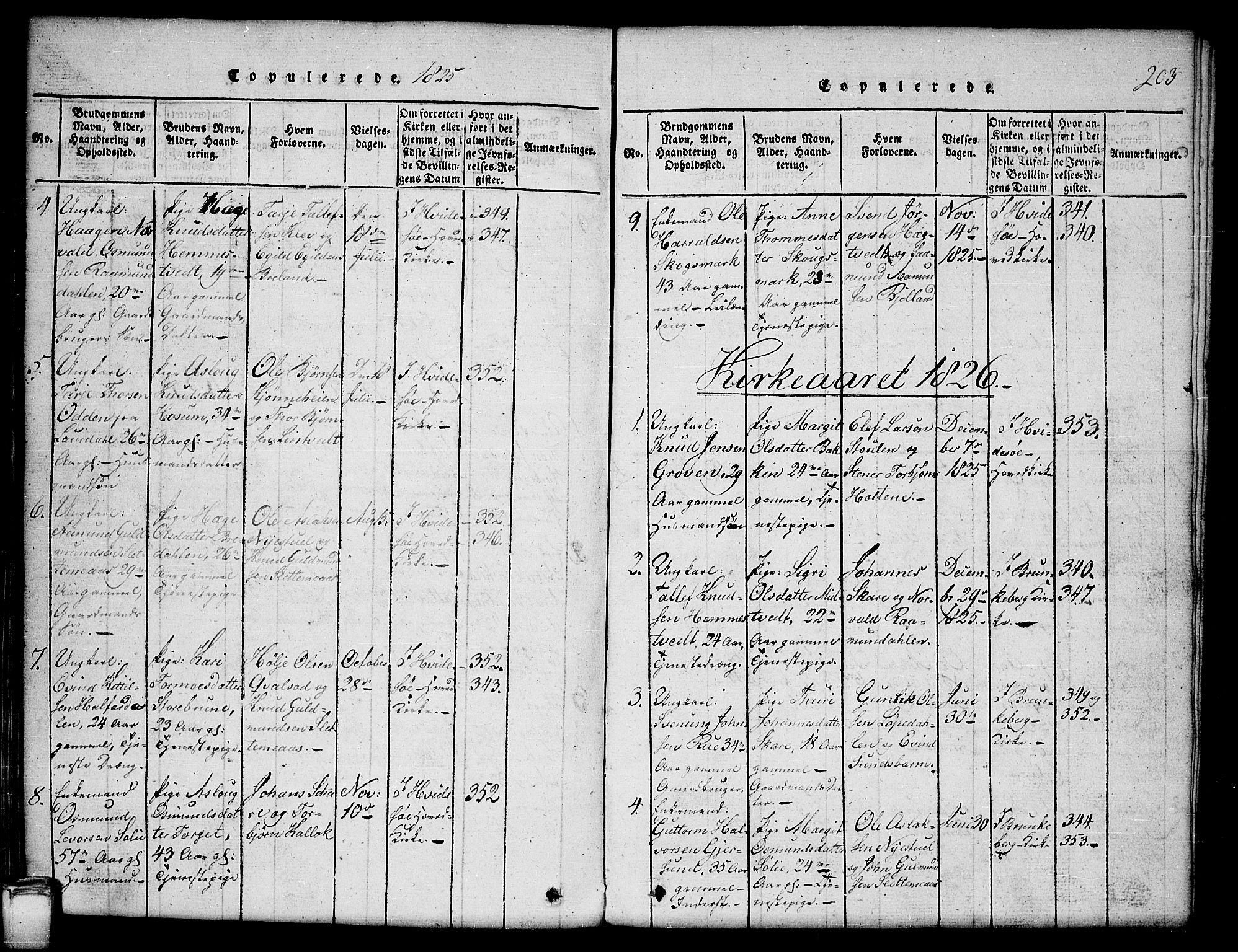 SAKO, Kviteseid kirkebøker, G/Gb/L0001: Klokkerbok nr. II 1, 1815-1842, s. 203