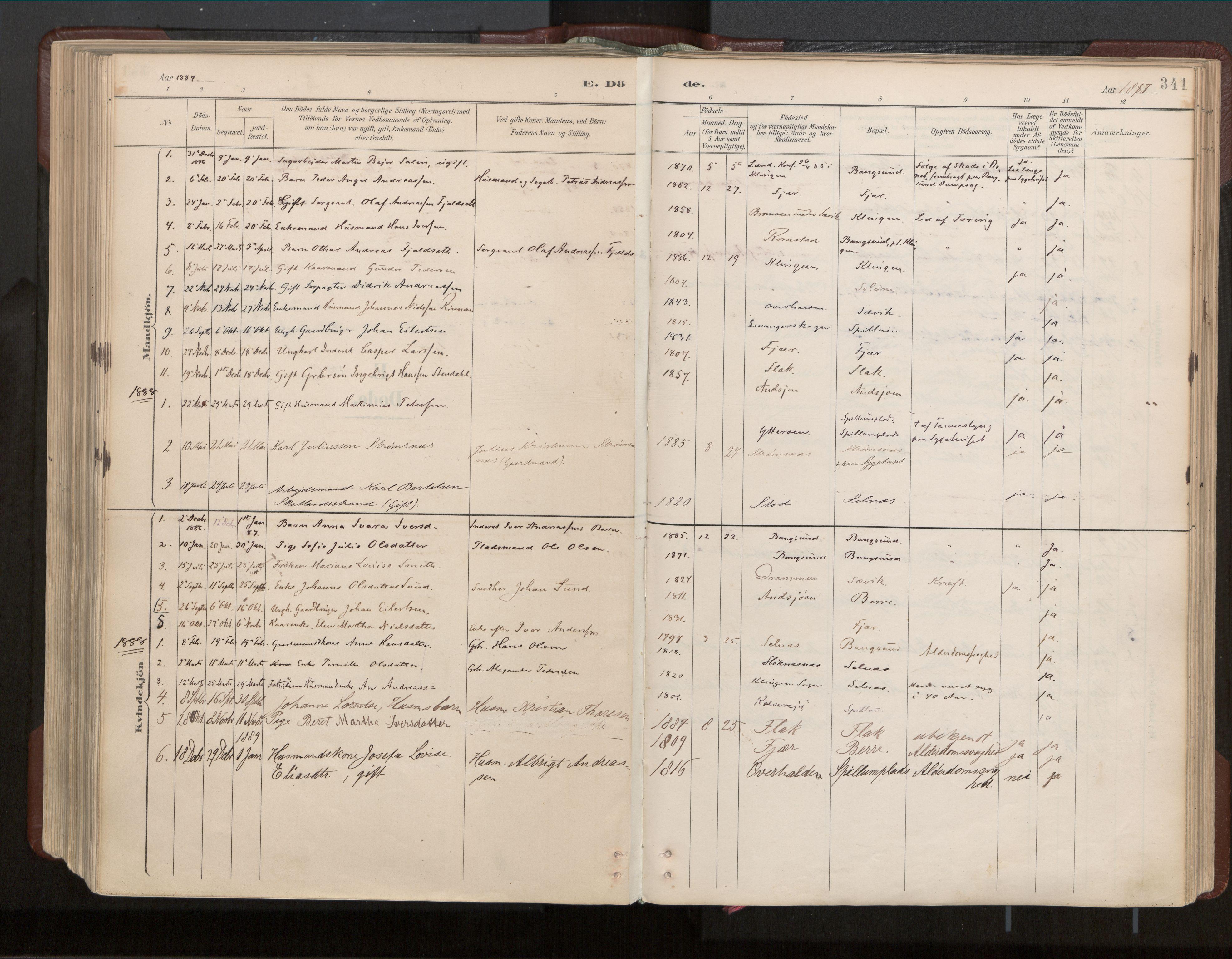 SAT, Ministerialprotokoller, klokkerbøker og fødselsregistre - Nord-Trøndelag, 770/L0589: Ministerialbok nr. 770A03, 1887-1929, s. 341