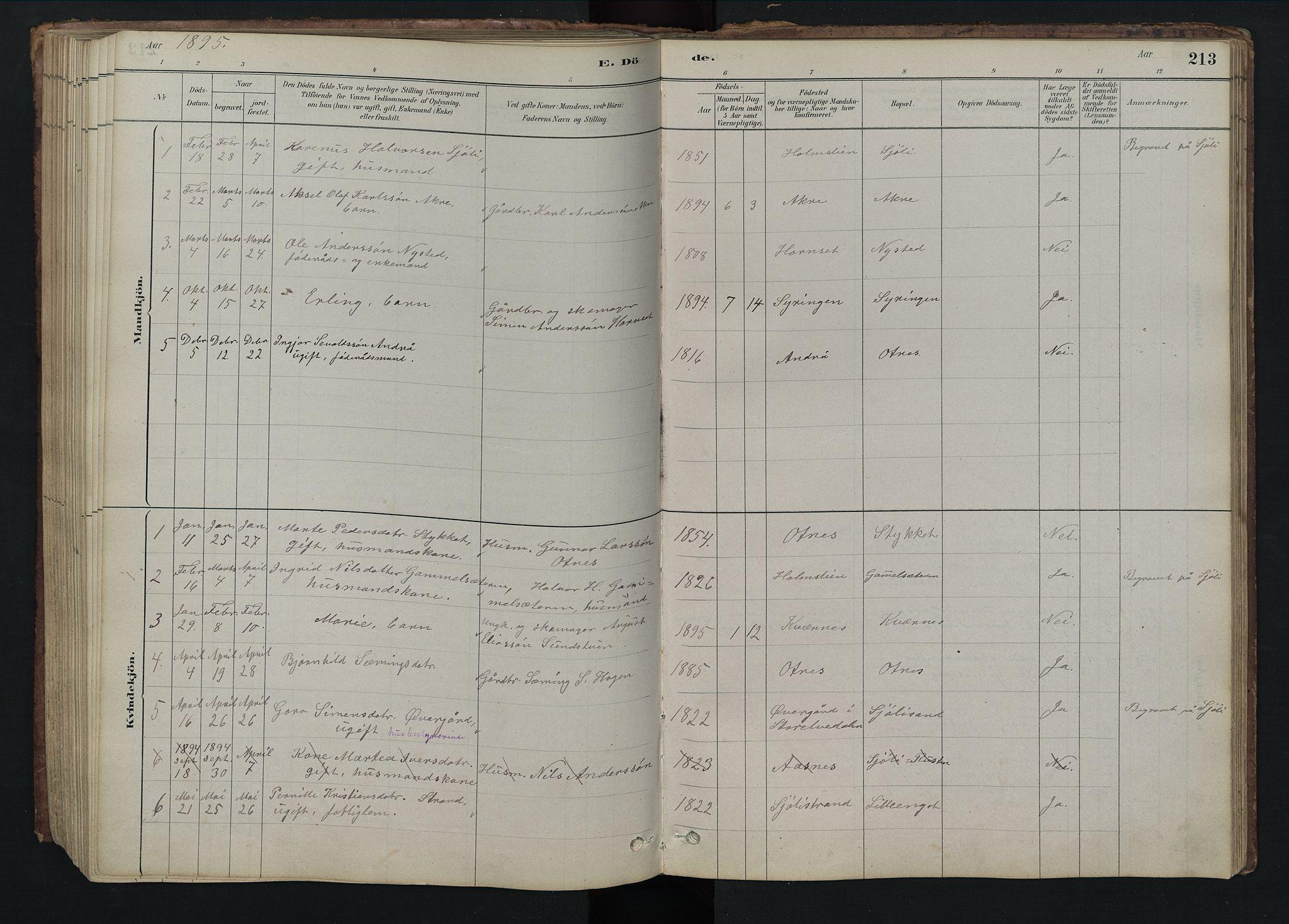 SAH, Rendalen prestekontor, H/Ha/Hab/L0009: Klokkerbok nr. 9, 1879-1902, s. 213