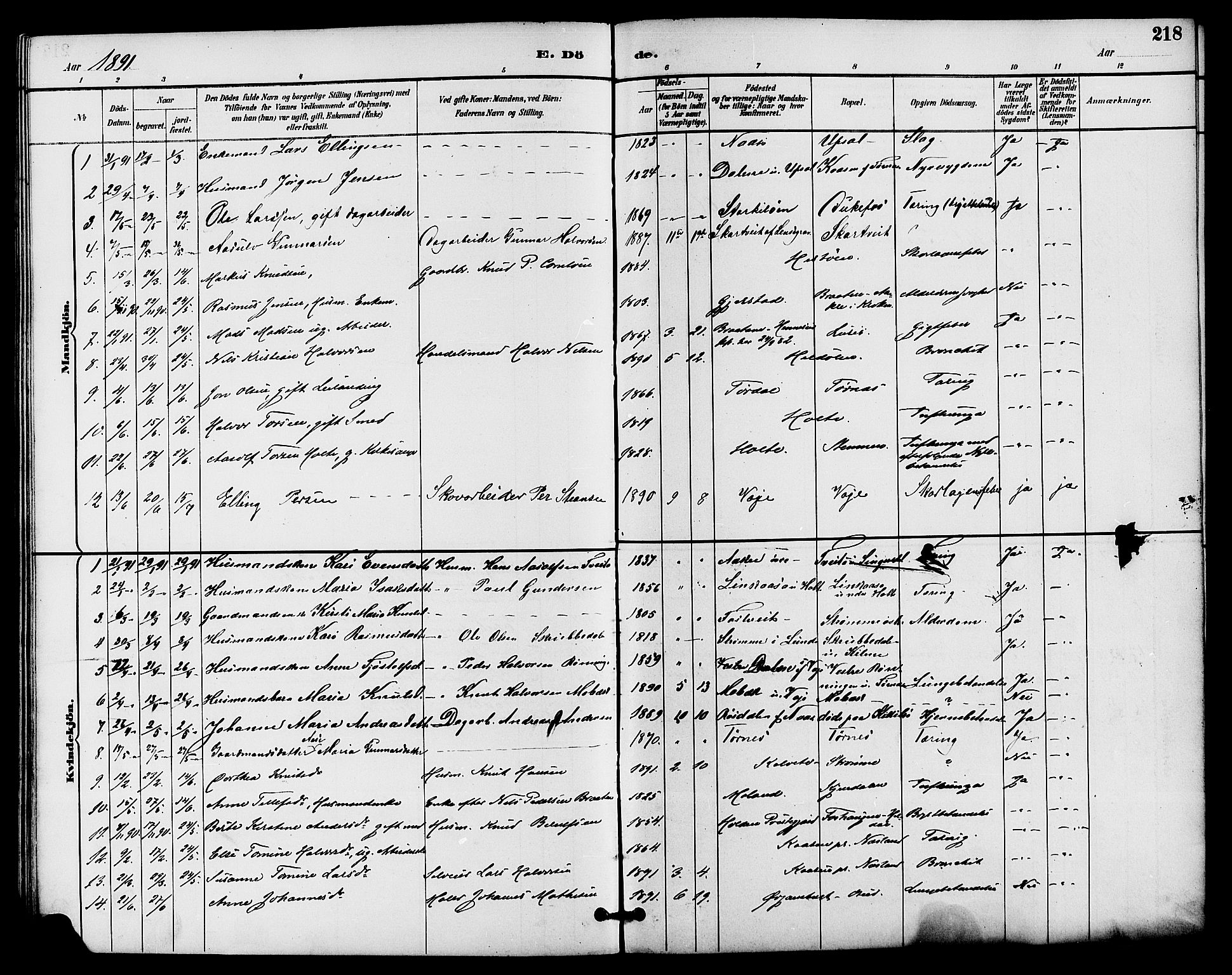 SAKO, Drangedal kirkebøker, G/Ga/L0003: Klokkerbok nr. I 3, 1887-1906, s. 218