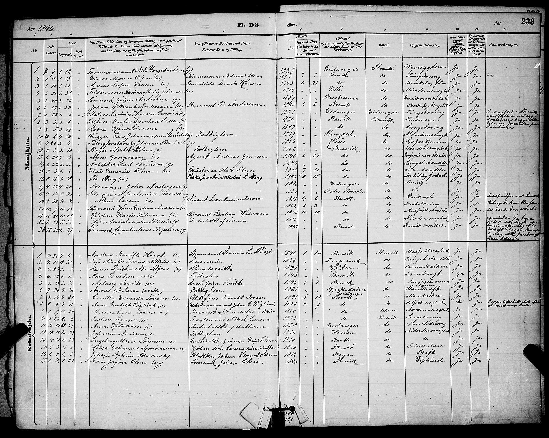 SAKO, Brevik kirkebøker, G/Ga/L0004: Klokkerbok nr. 4, 1882-1900, s. 233