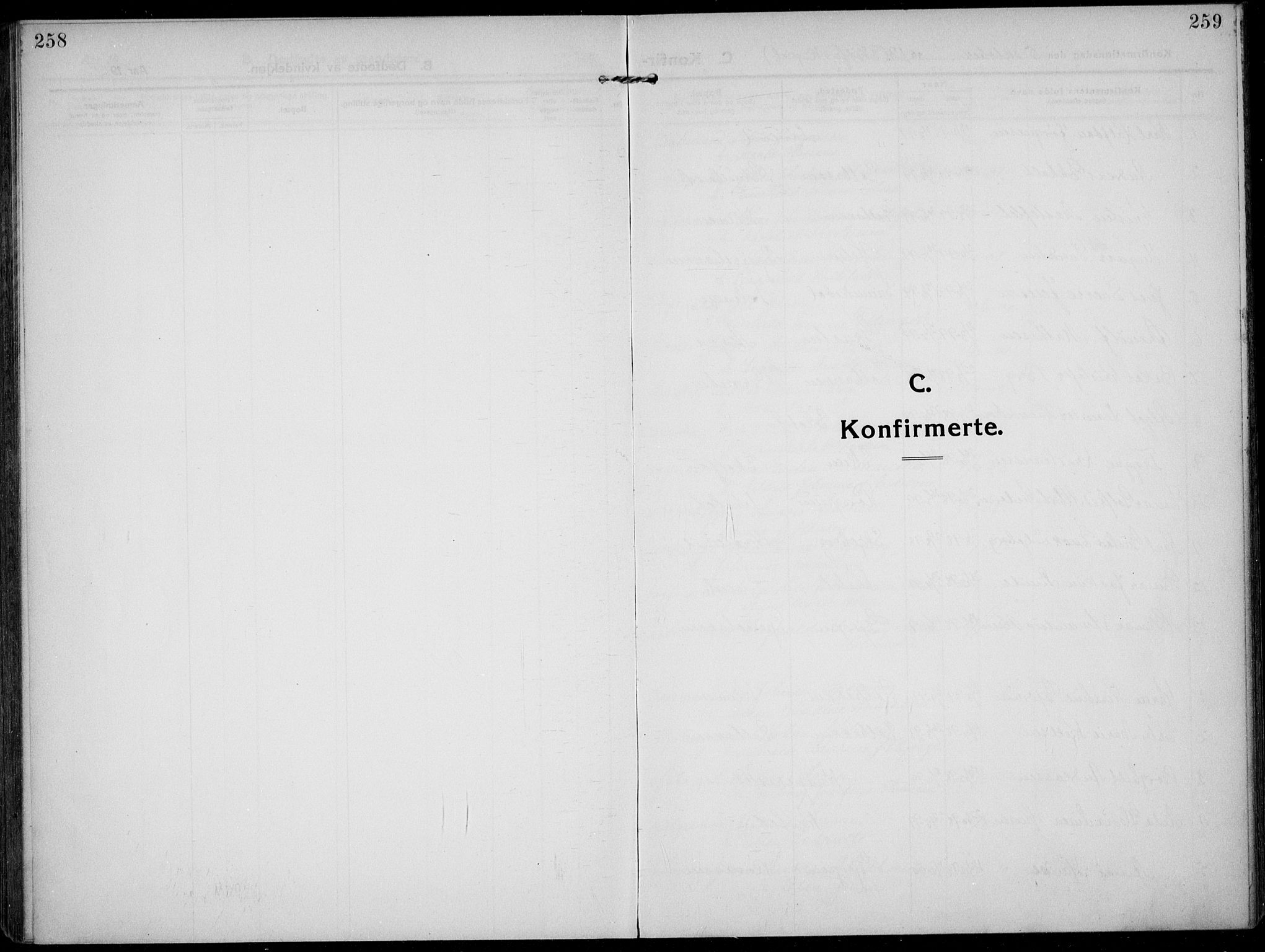 SAKO, Solum kirkebøker, F/Fb/L0004: Ministerialbok nr. II 4, 1913-1924, s. 258-259