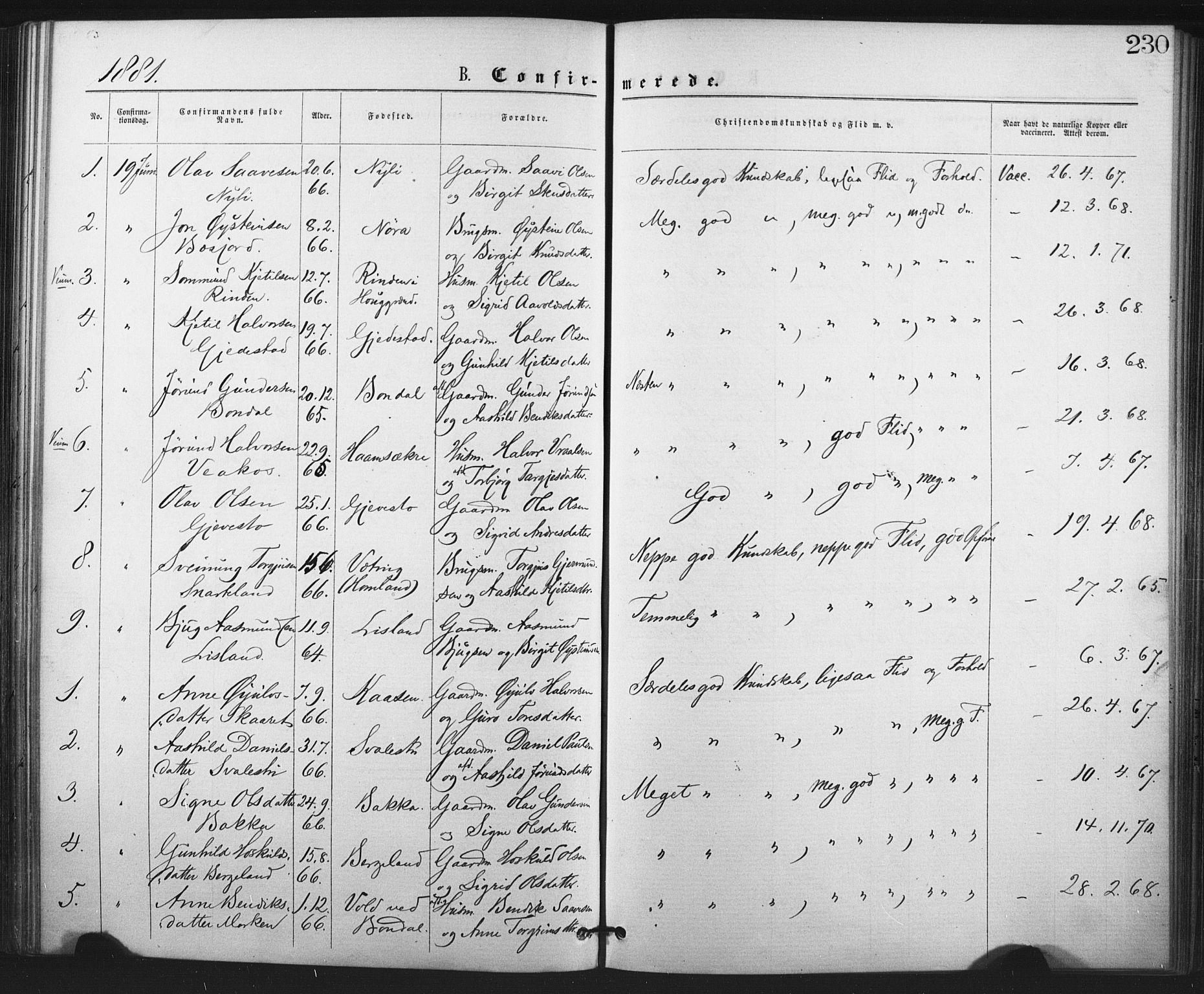 SAKO, Fyresdal kirkebøker, F/Fa/L0006: Ministerialbok nr. I 6, 1872-1886, s. 230
