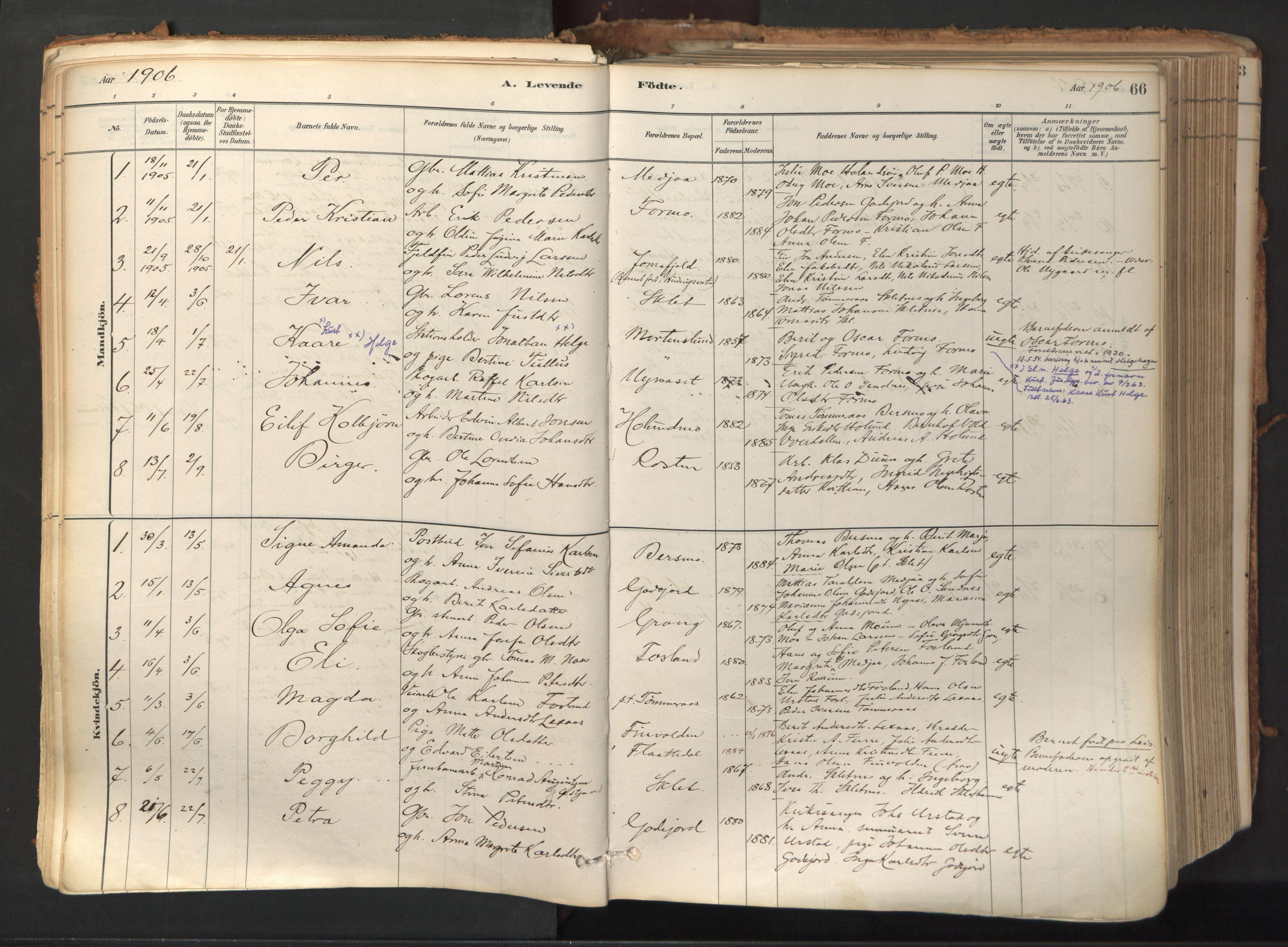 SAT, Ministerialprotokoller, klokkerbøker og fødselsregistre - Nord-Trøndelag, 758/L0519: Ministerialbok nr. 758A04, 1880-1926, s. 66