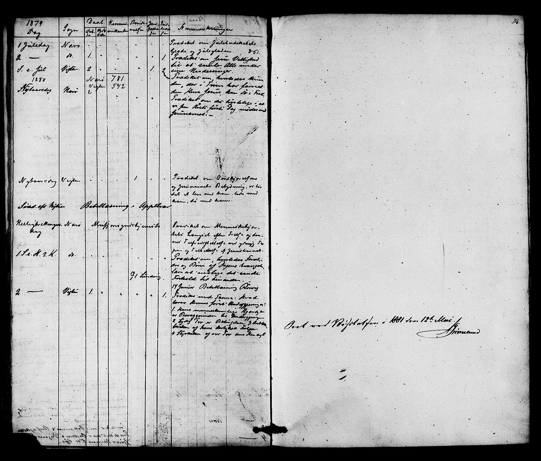 SAT, Ministerialprotokoller, klokkerbøker og fødselsregistre - Nord-Trøndelag, 784/L0671: Ministerialbok nr. 784A06, 1876-1879, s. 116