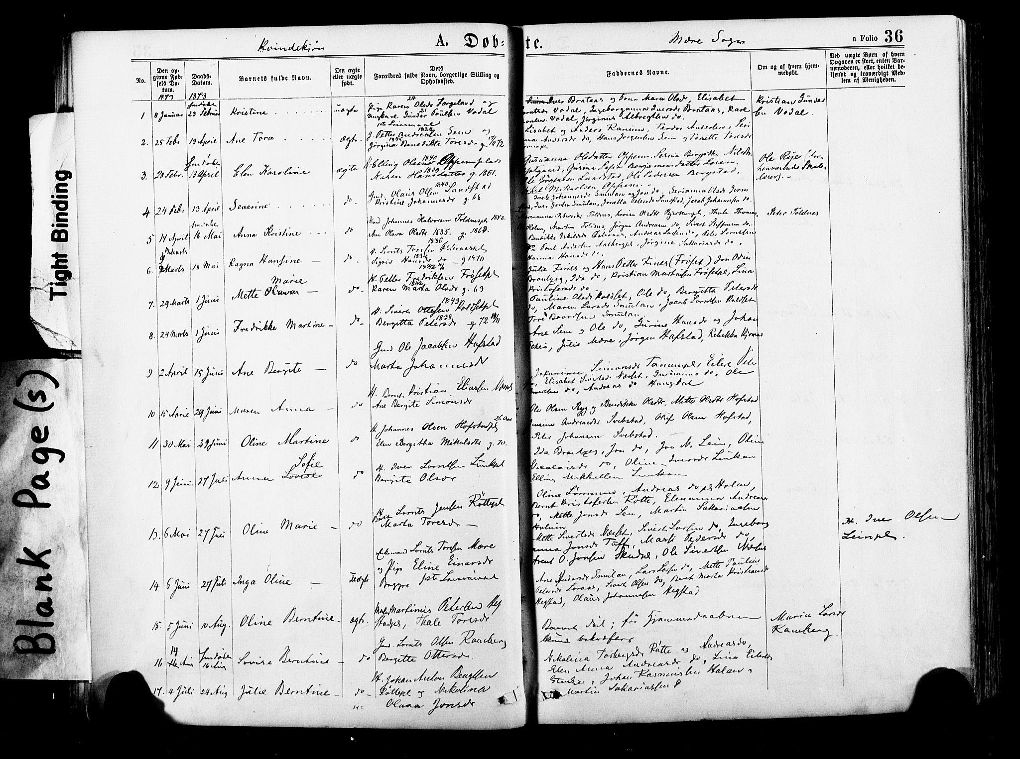 SAT, Ministerialprotokoller, klokkerbøker og fødselsregistre - Nord-Trøndelag, 735/L0348: Ministerialbok nr. 735A09 /1, 1873-1883, s. 36