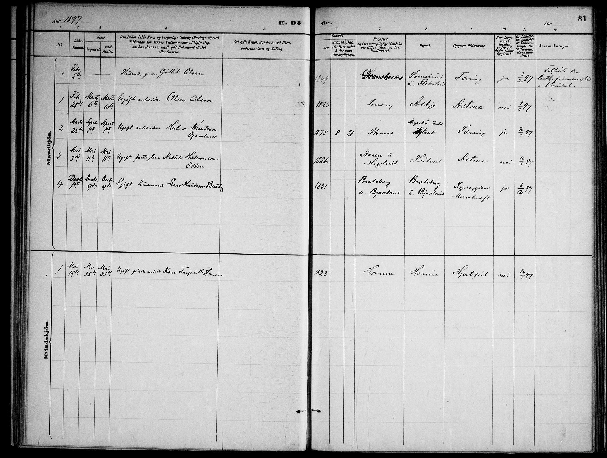 SAKO, Lårdal kirkebøker, F/Fa/L0007: Ministerialbok nr. I 7, 1887-1906, s. 81