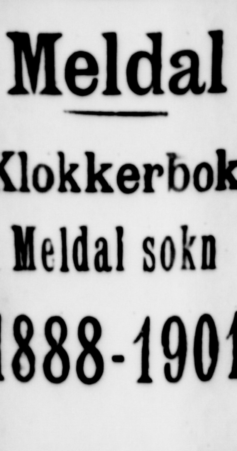 SAT, Ministerialprotokoller, klokkerbøker og fødselsregistre - Sør-Trøndelag, 672/L0863: Klokkerbok nr. 672C02, 1888-1901