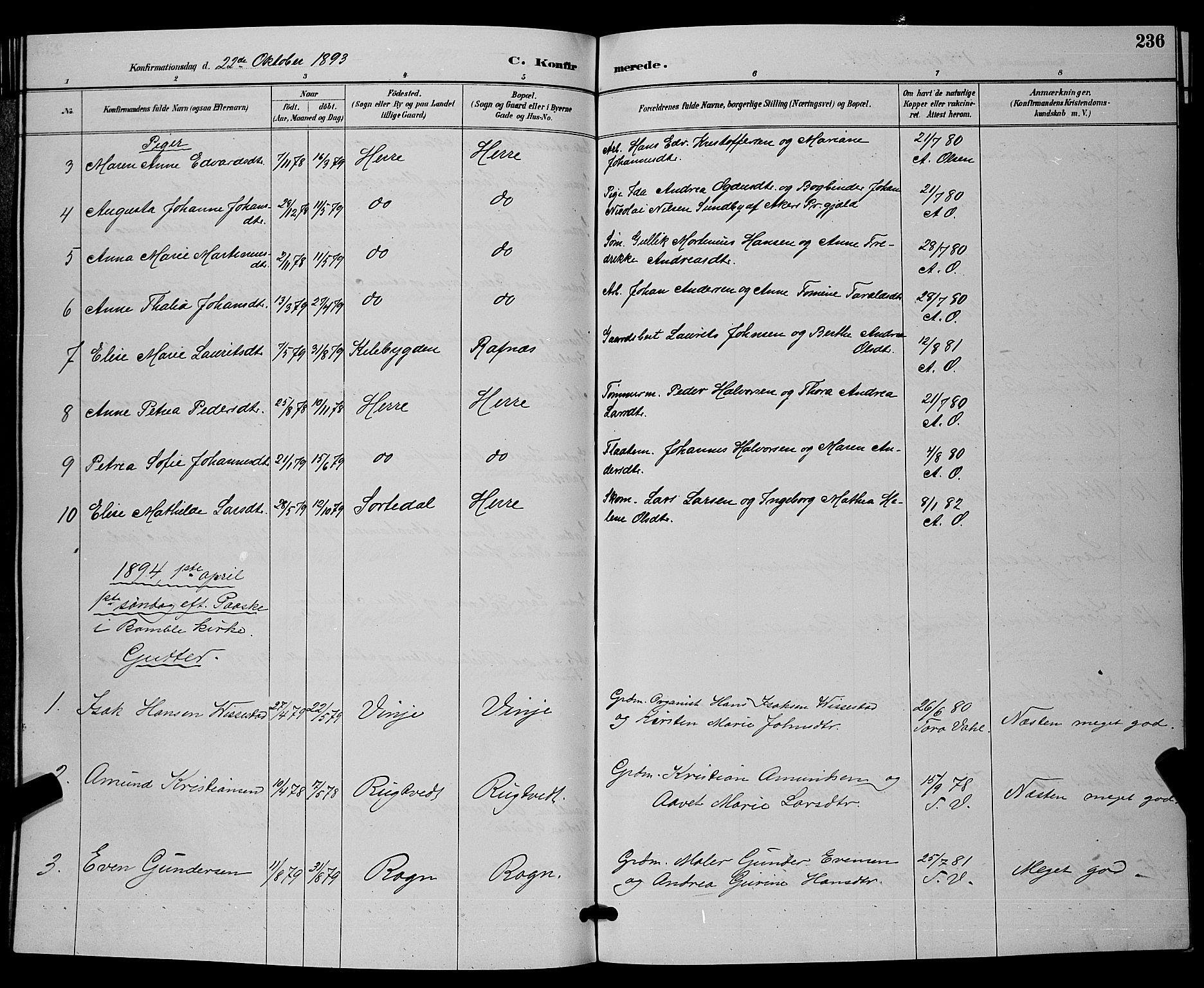 SAKO, Bamble kirkebøker, G/Ga/L0009: Klokkerbok nr. I 9, 1888-1900, s. 236