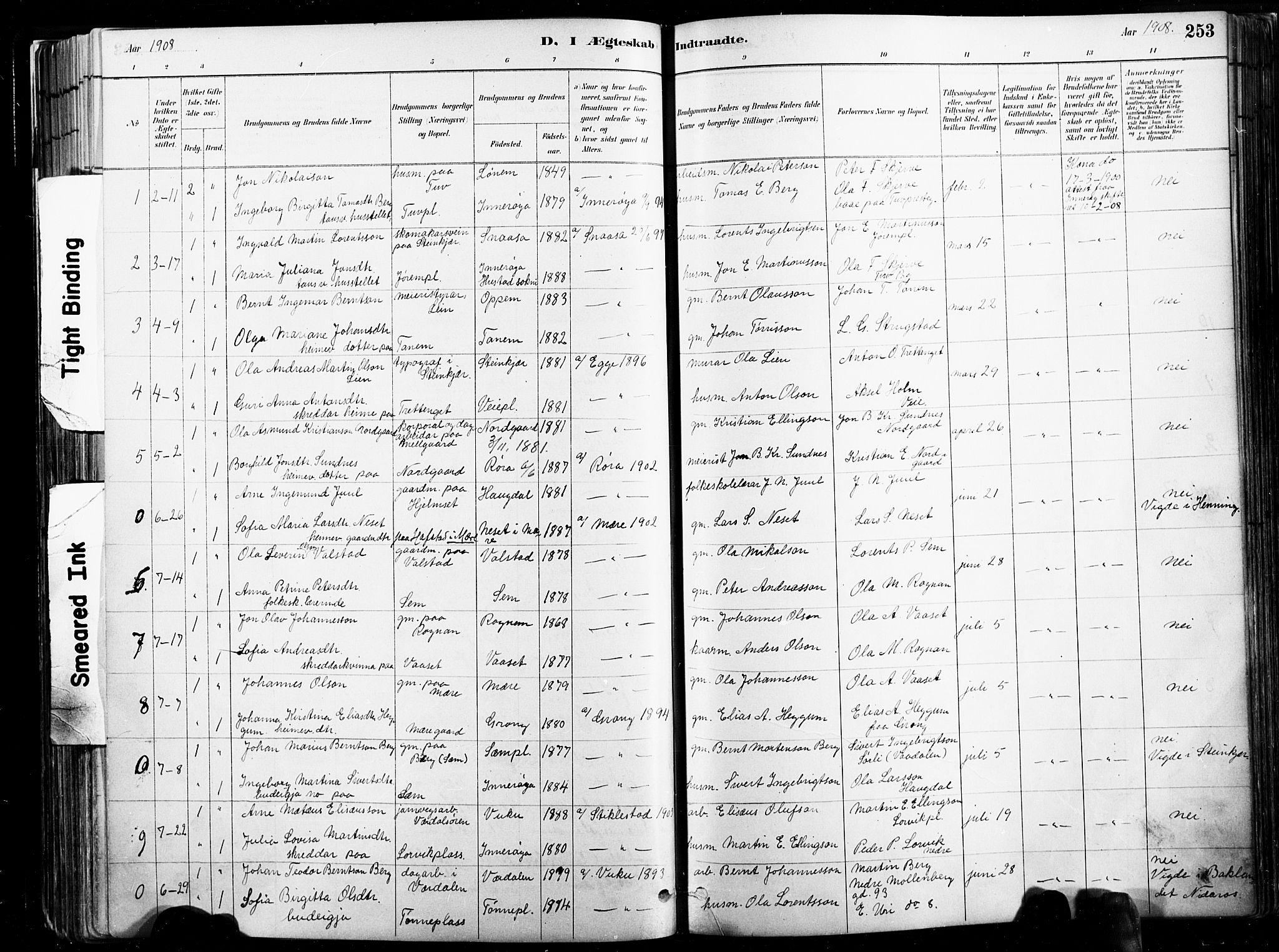 SAT, Ministerialprotokoller, klokkerbøker og fødselsregistre - Nord-Trøndelag, 735/L0351: Ministerialbok nr. 735A10, 1884-1908, s. 253