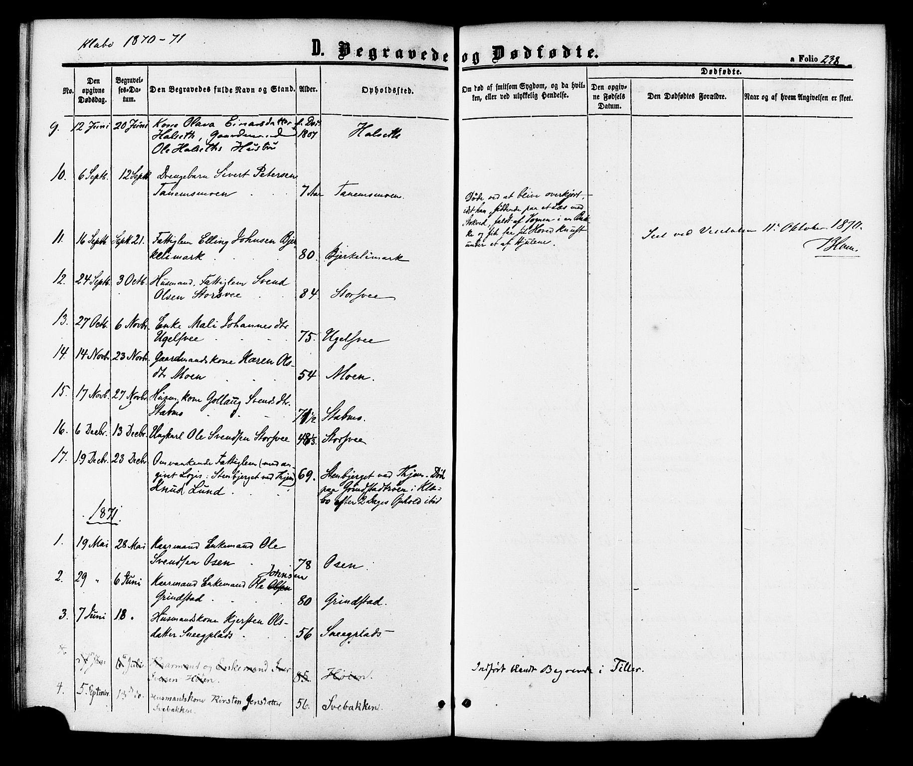 SAT, Ministerialprotokoller, klokkerbøker og fødselsregistre - Sør-Trøndelag, 618/L0442: Ministerialbok nr. 618A06 /1, 1863-1879, s. 238