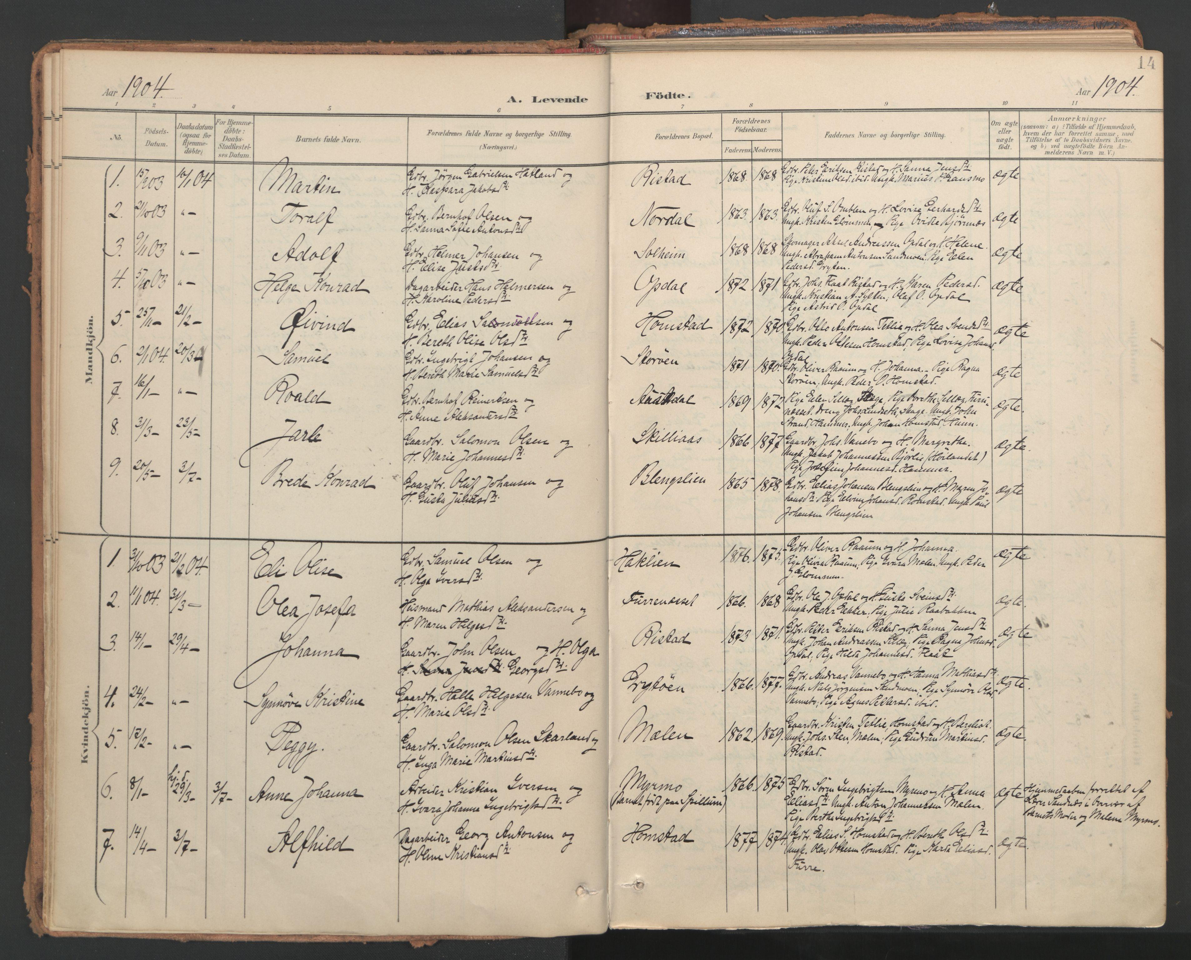 SAT, Ministerialprotokoller, klokkerbøker og fødselsregistre - Nord-Trøndelag, 766/L0564: Ministerialbok nr. 767A02, 1900-1932, s. 14