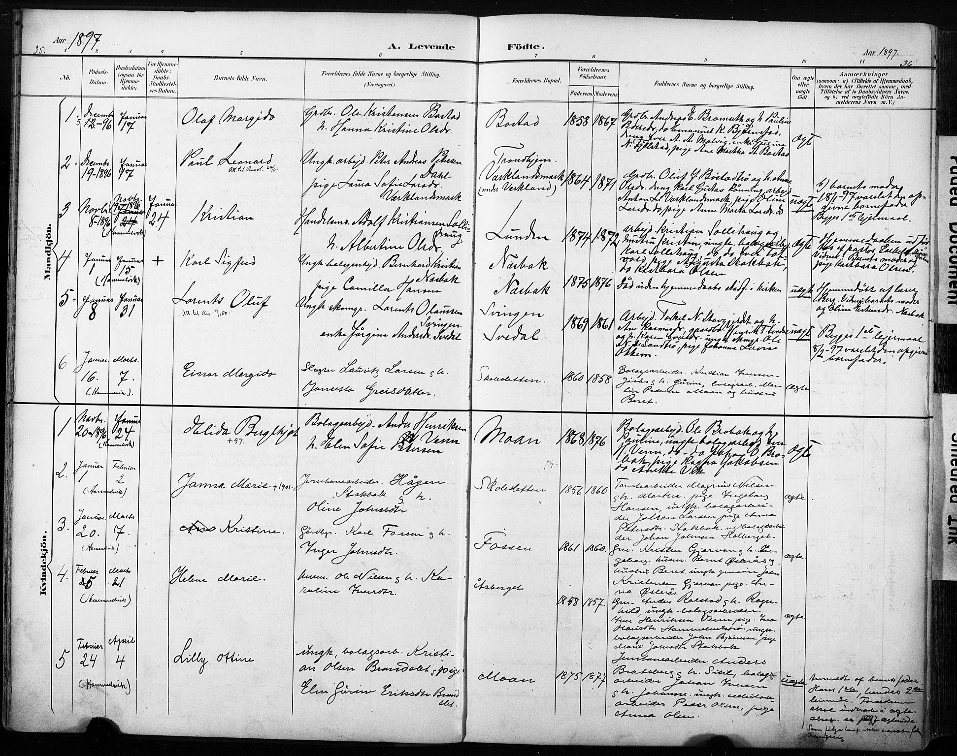 SAT, Ministerialprotokoller, klokkerbøker og fødselsregistre - Sør-Trøndelag, 616/L0411: Ministerialbok nr. 616A08, 1894-1906, s. 35-36