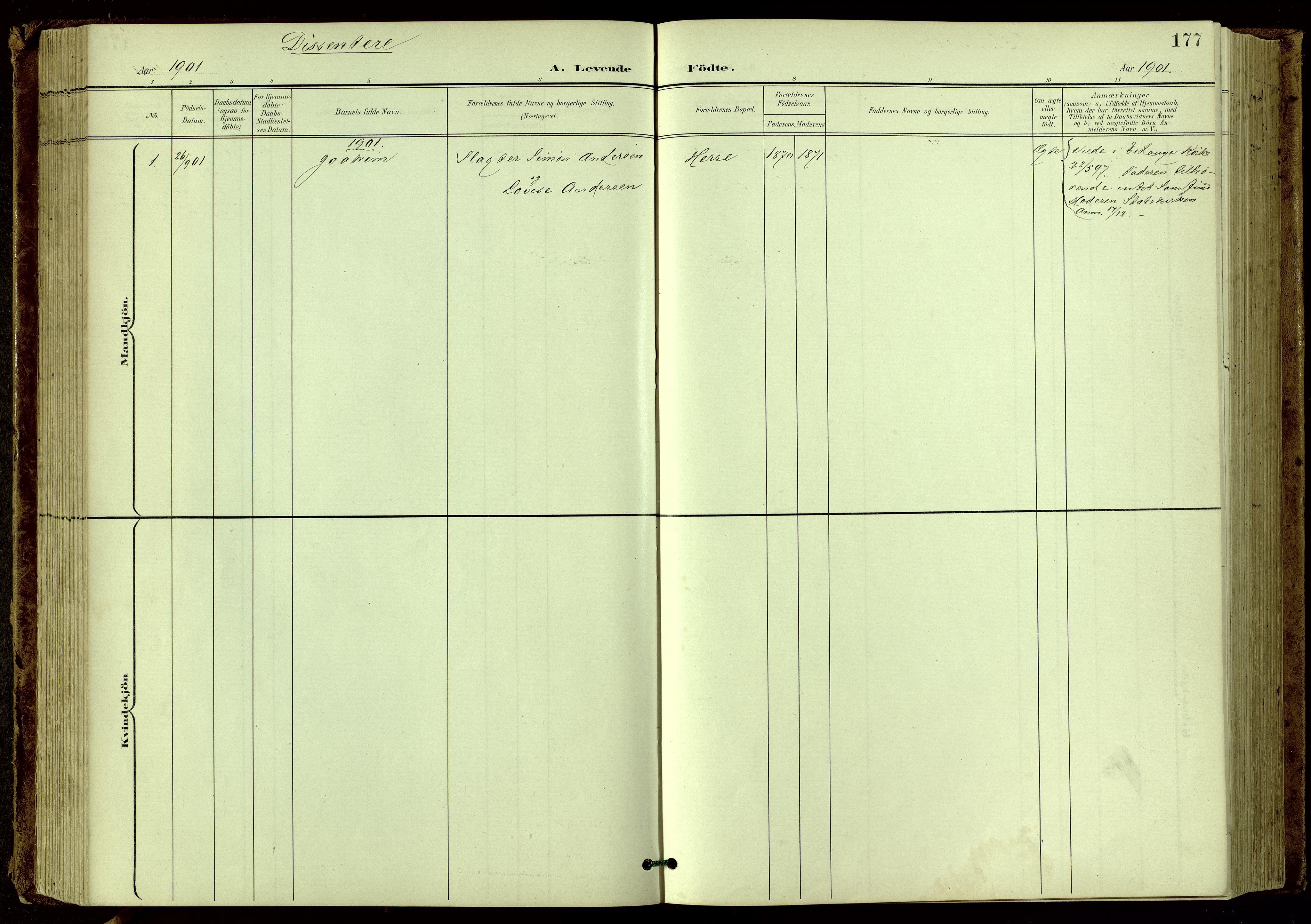 SAKO, Bamble kirkebøker, G/Ga/L0010: Klokkerbok nr. I 10, 1901-1919, s. 177