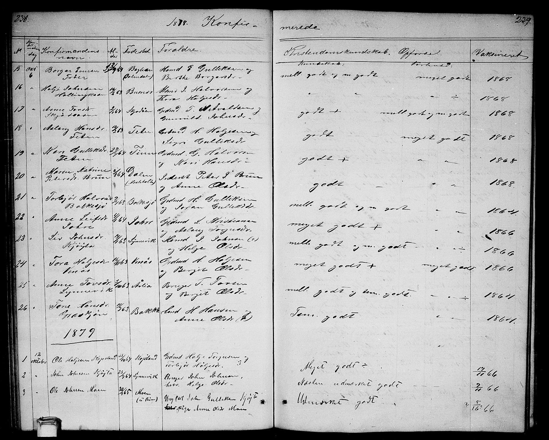 SAKO, Gransherad kirkebøker, G/Ga/L0002: Klokkerbok nr. I 2, 1854-1886, s. 238-239
