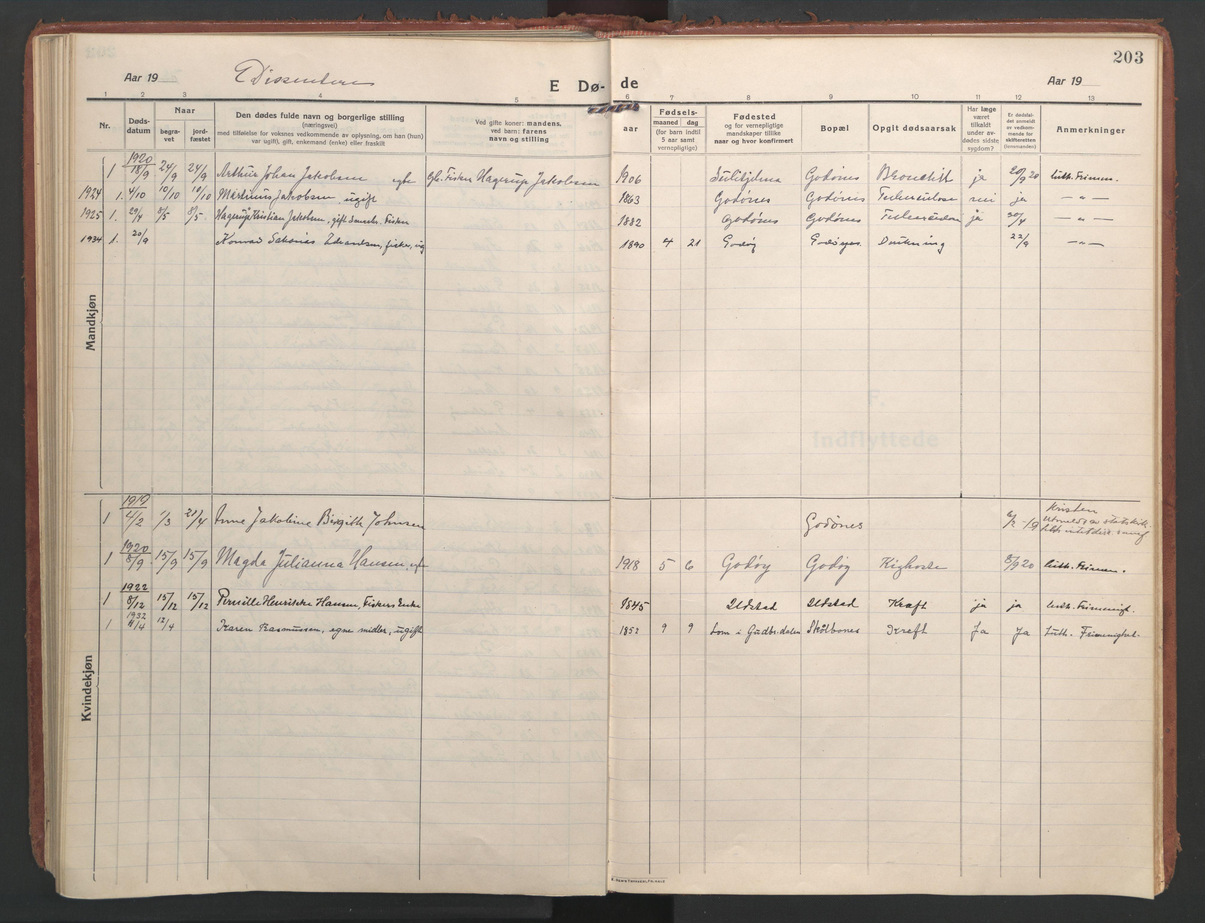 SAT, Ministerialprotokoller, klokkerbøker og fødselsregistre - Nordland, 804/L0086: Ministerialbok nr. 804A07, 1916-1935, s. 203