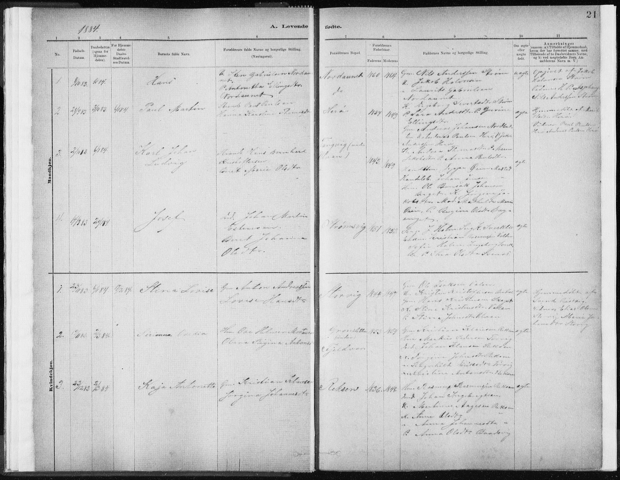 SAT, Ministerialprotokoller, klokkerbøker og fødselsregistre - Sør-Trøndelag, 637/L0558: Ministerialbok nr. 637A01, 1882-1899, s. 21