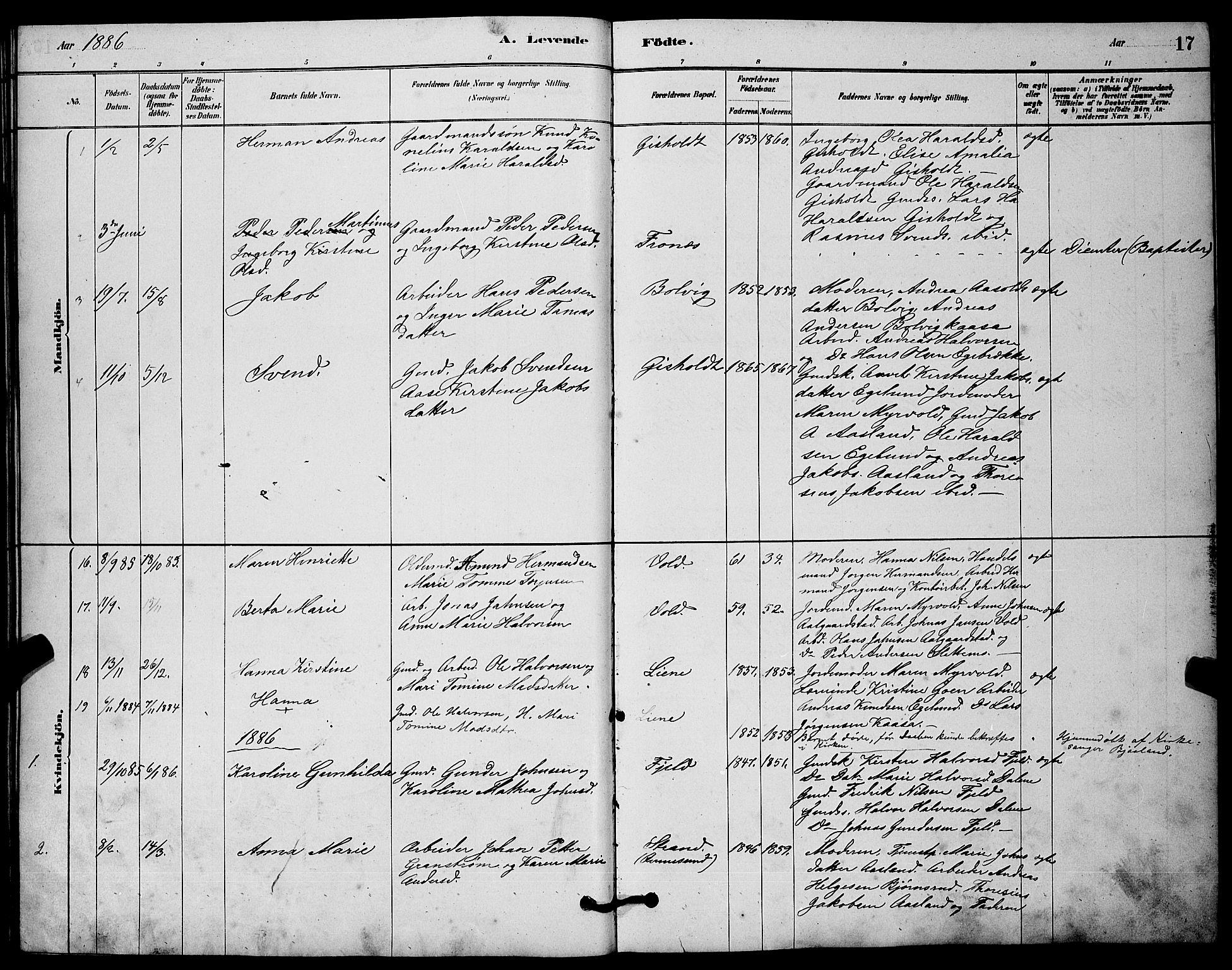 SAKO, Solum kirkebøker, G/Gc/L0001: Klokkerbok nr. III 1, 1880-1902, s. 17