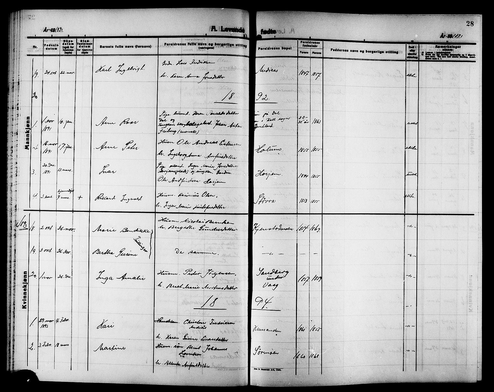 SAT, Ministerialprotokoller, klokkerbøker og fødselsregistre - Nord-Trøndelag, 749/L0487: Ministerialbok nr. 749D03, 1887-1902, s. 28